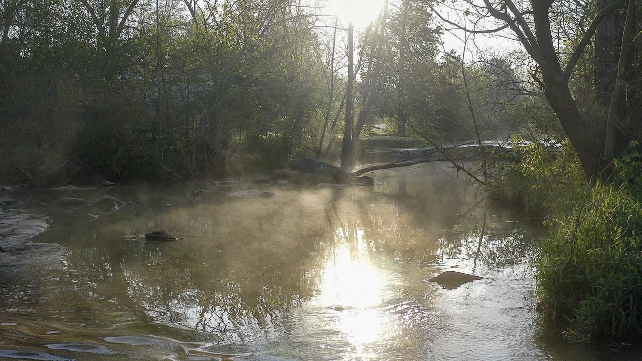 400 Bear Creek Pike Property Photo 20