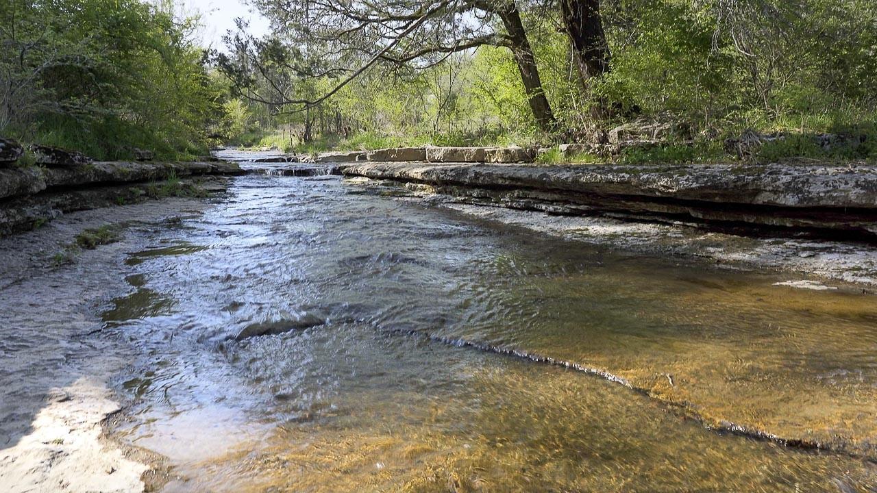400 Bear Creek Pike Property Photo 21