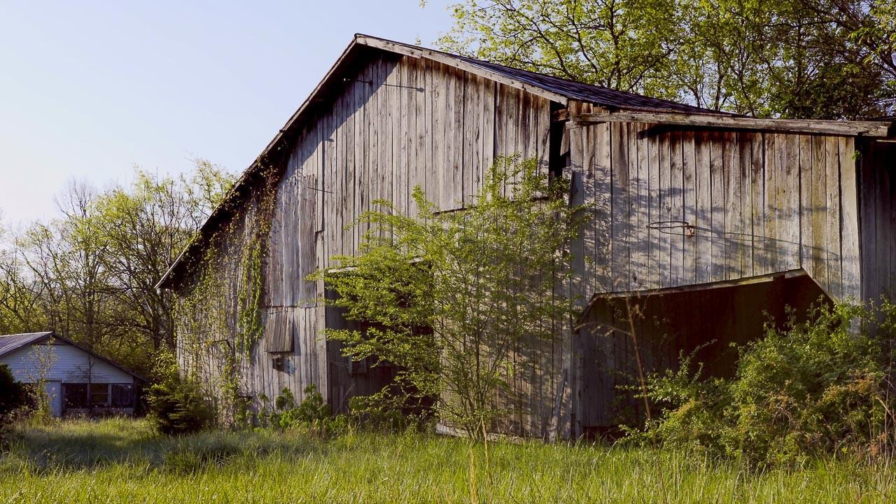 400 Bear Creek Pike Property Photo 26