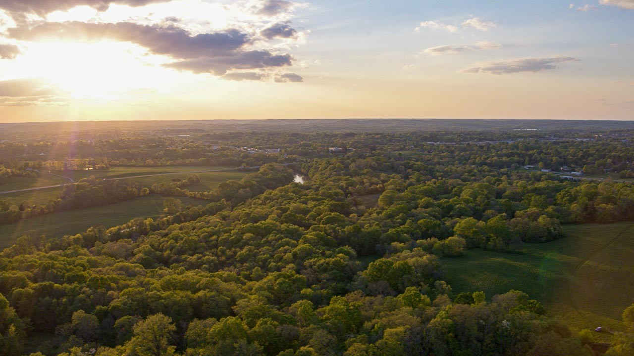 400 Bear Creek Pike Property Photo 31