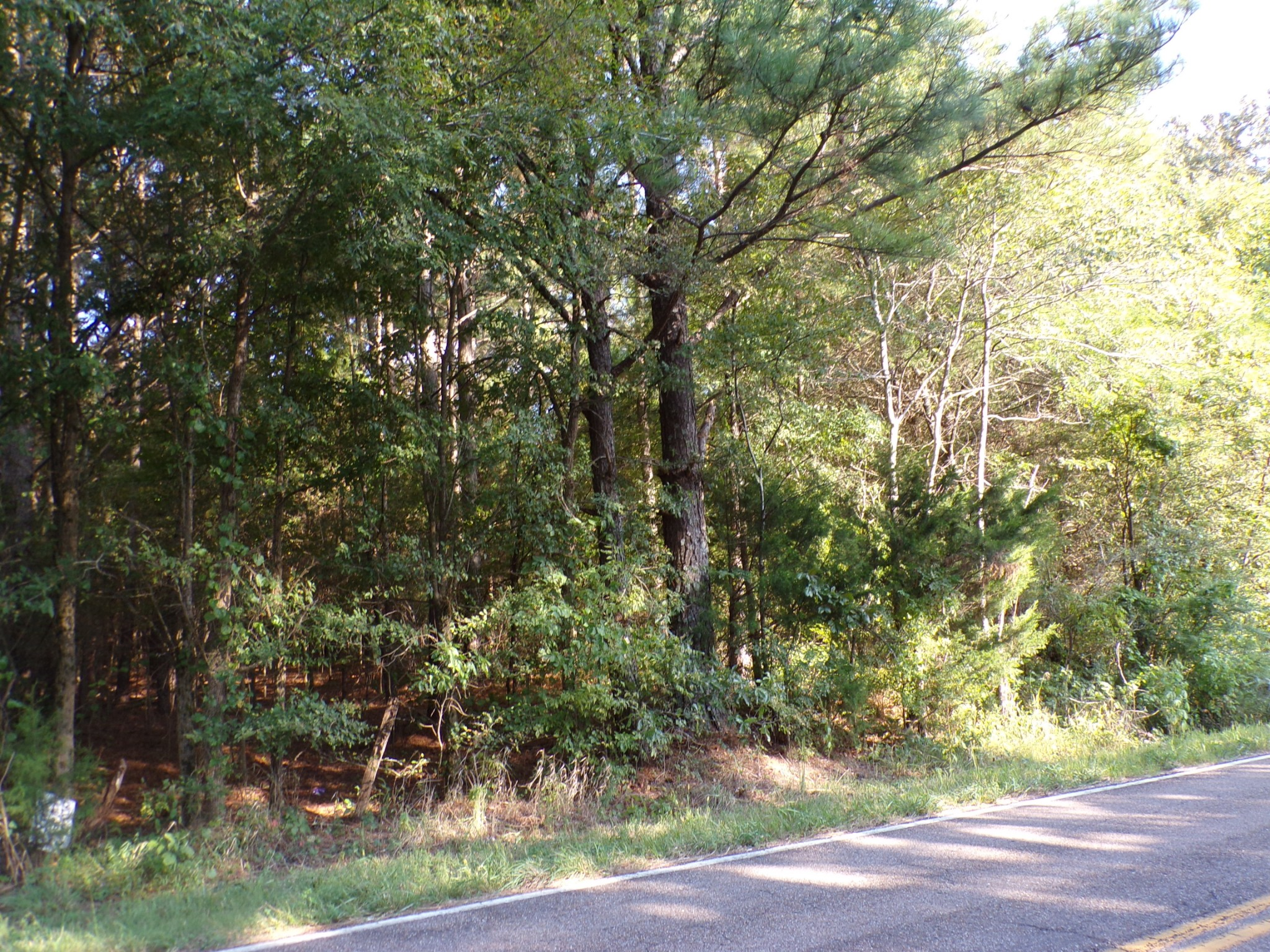 1 Buchanan / Highway 218 Property Photo