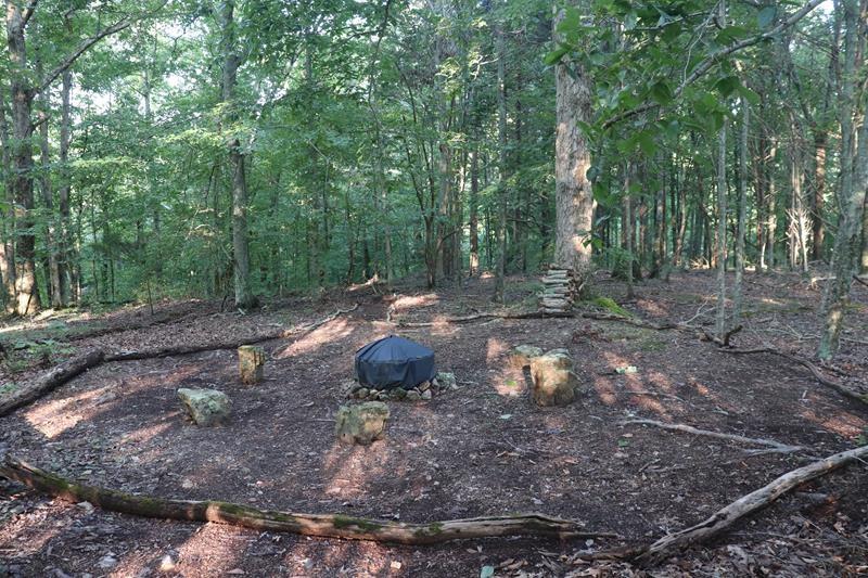 3467 Pleasant Ridge Rd Property Photo 20