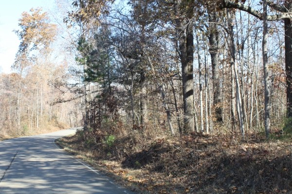4727 Highway 100 Property Photo 11