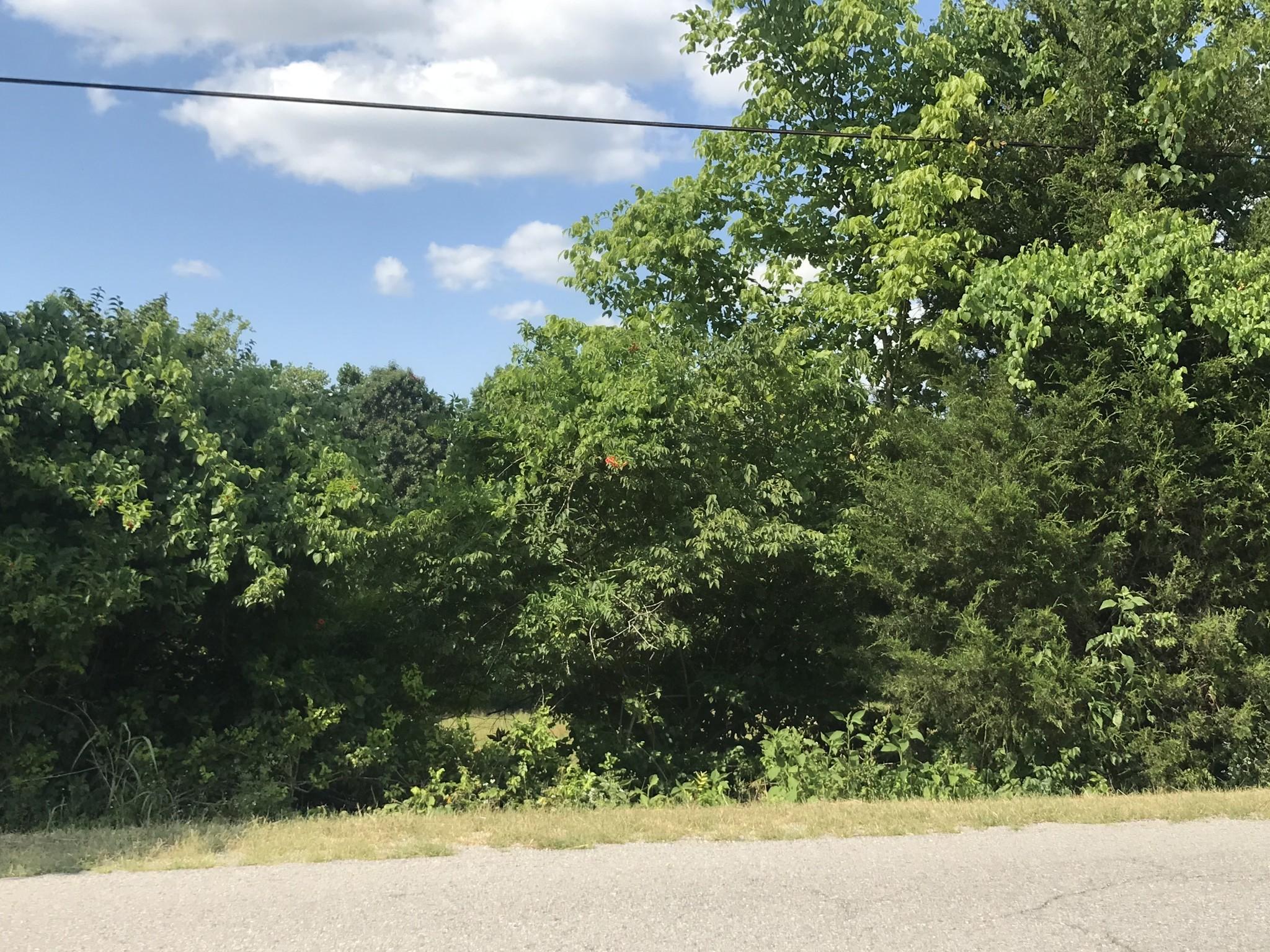 0 Pleasant Hill Road Property Photo