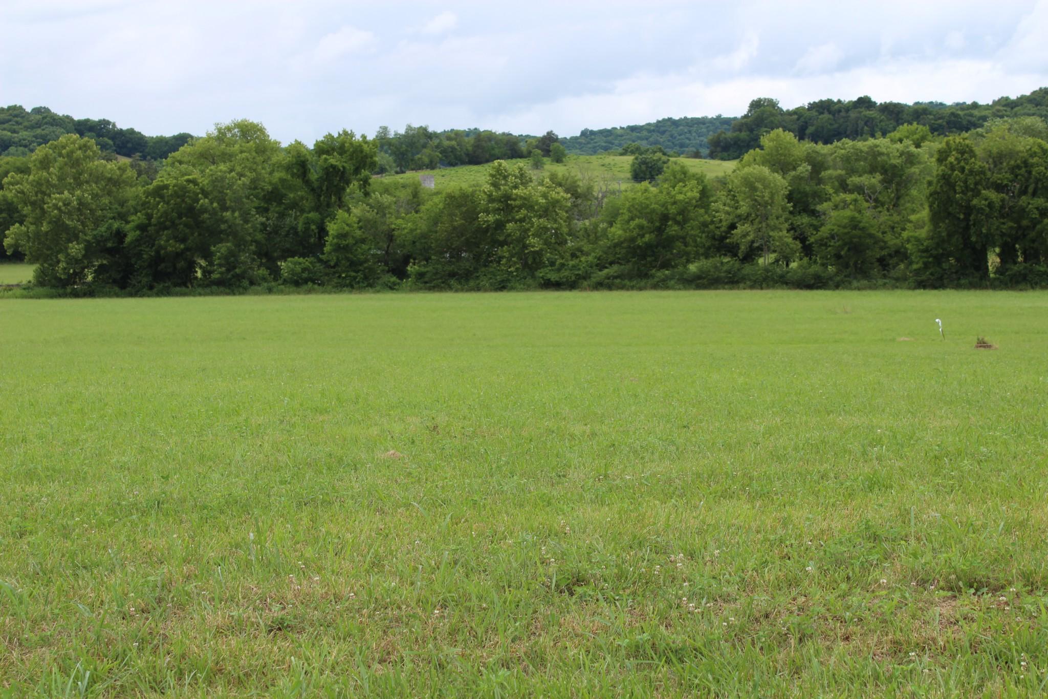 0 John Bragg Hwy Property Photo