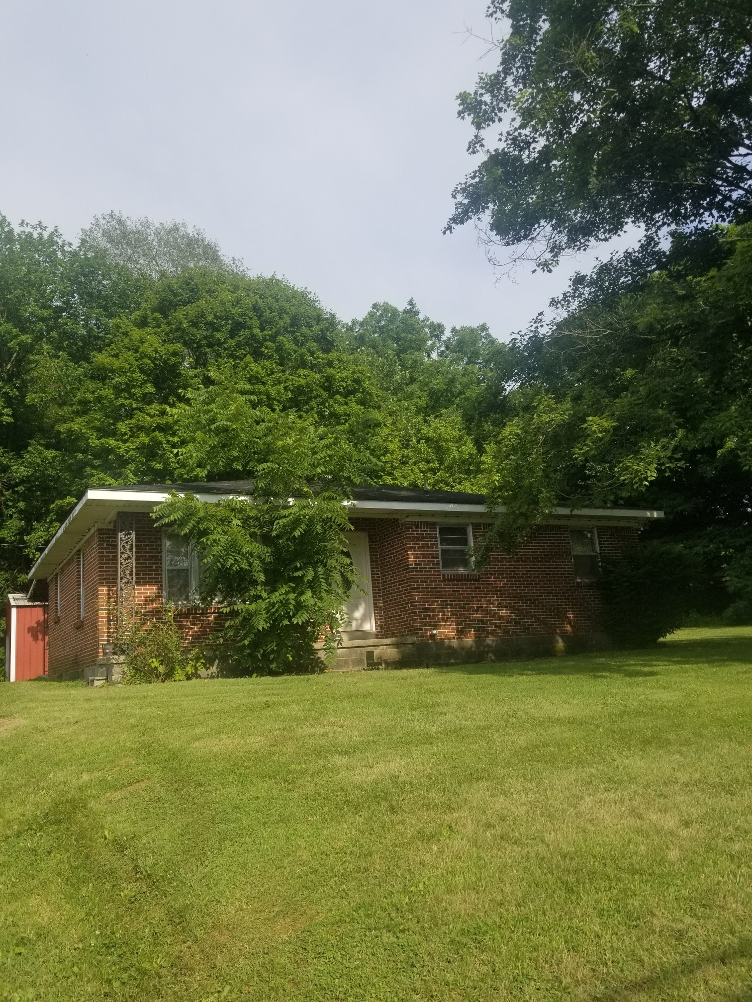 17211 Clay County Hwy Property Photo