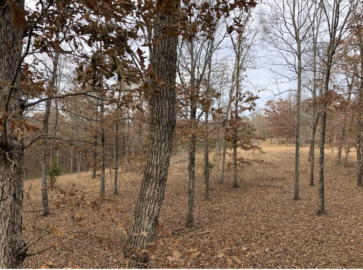 0 W Of Brown Mill Rd Property Photo