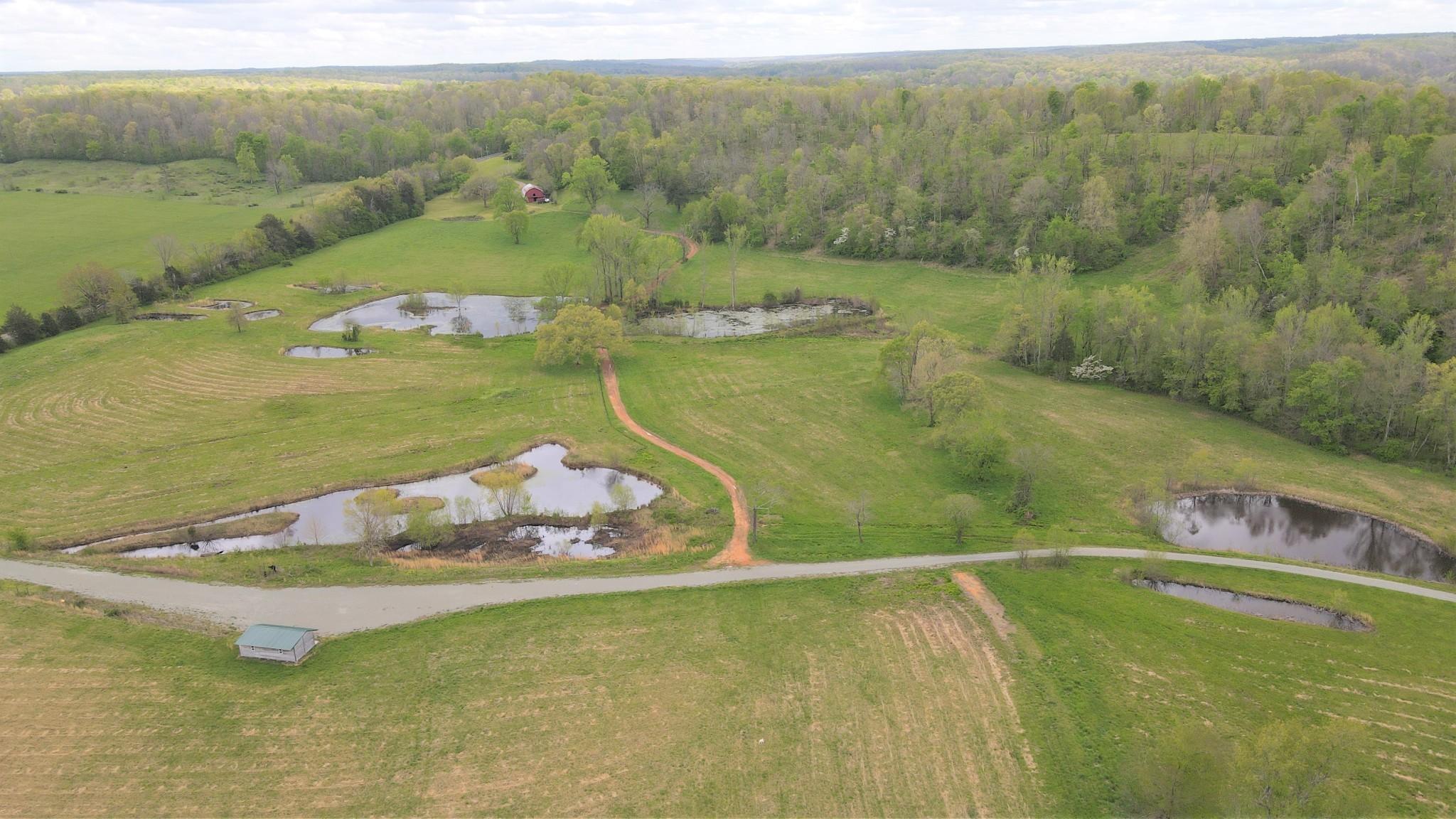 3301 Natural Bridge Rd Property Photo