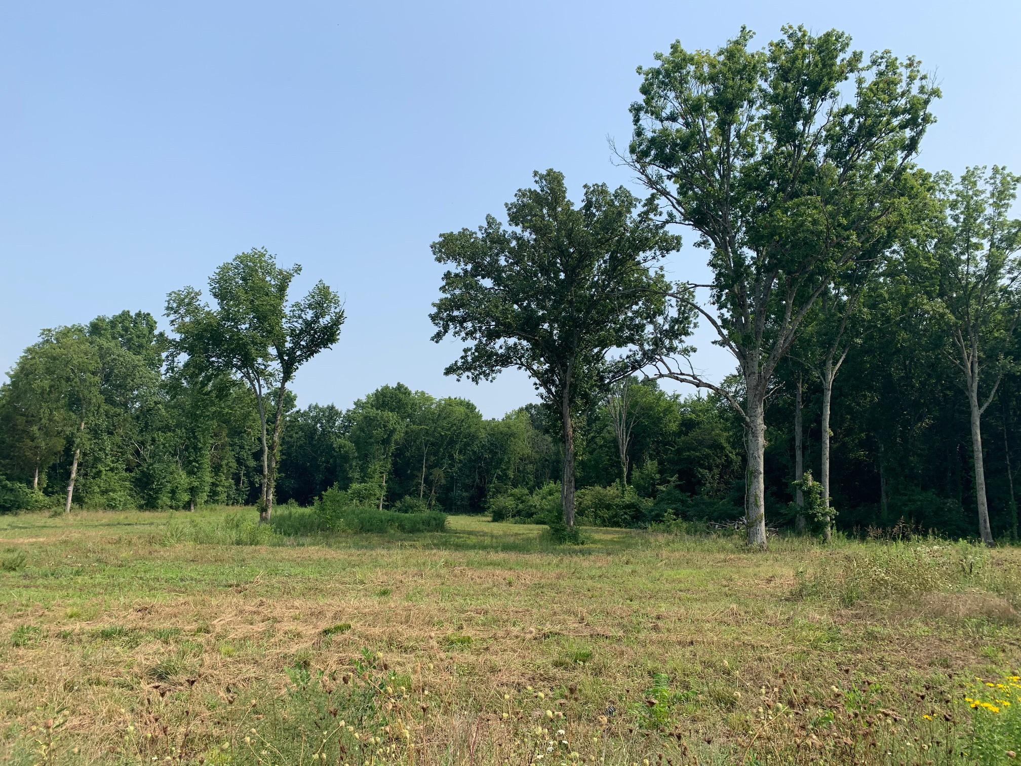 0 Long Creek Dr Property Photo 1