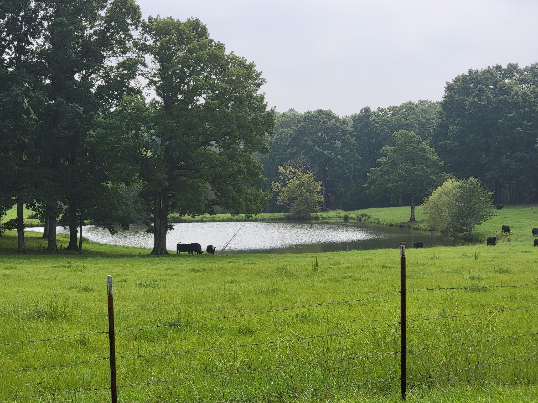 1677 Tenn Ridge Rd Property Photo