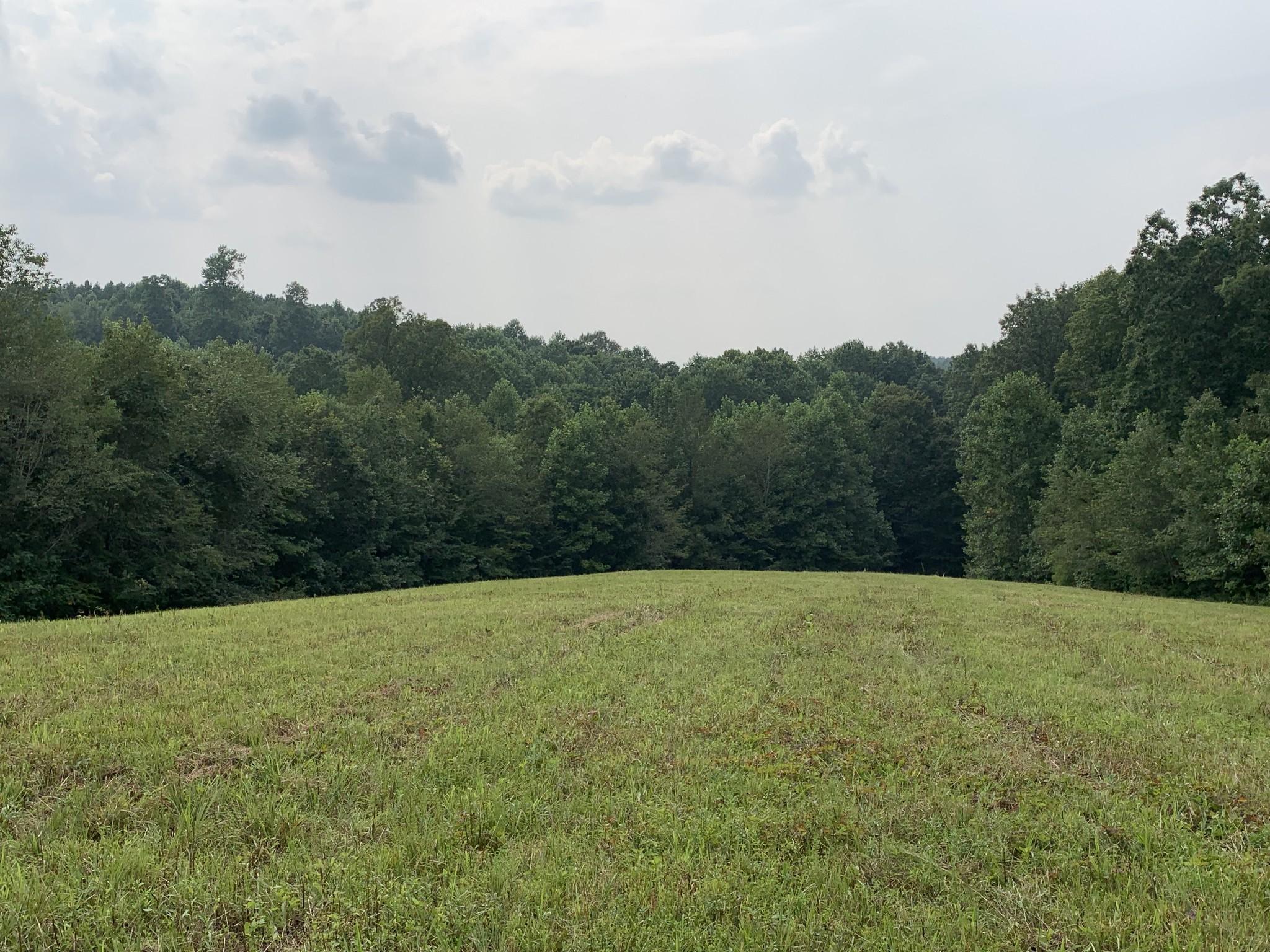 9177 Buttermilk Ridge Rd Property Photo 6
