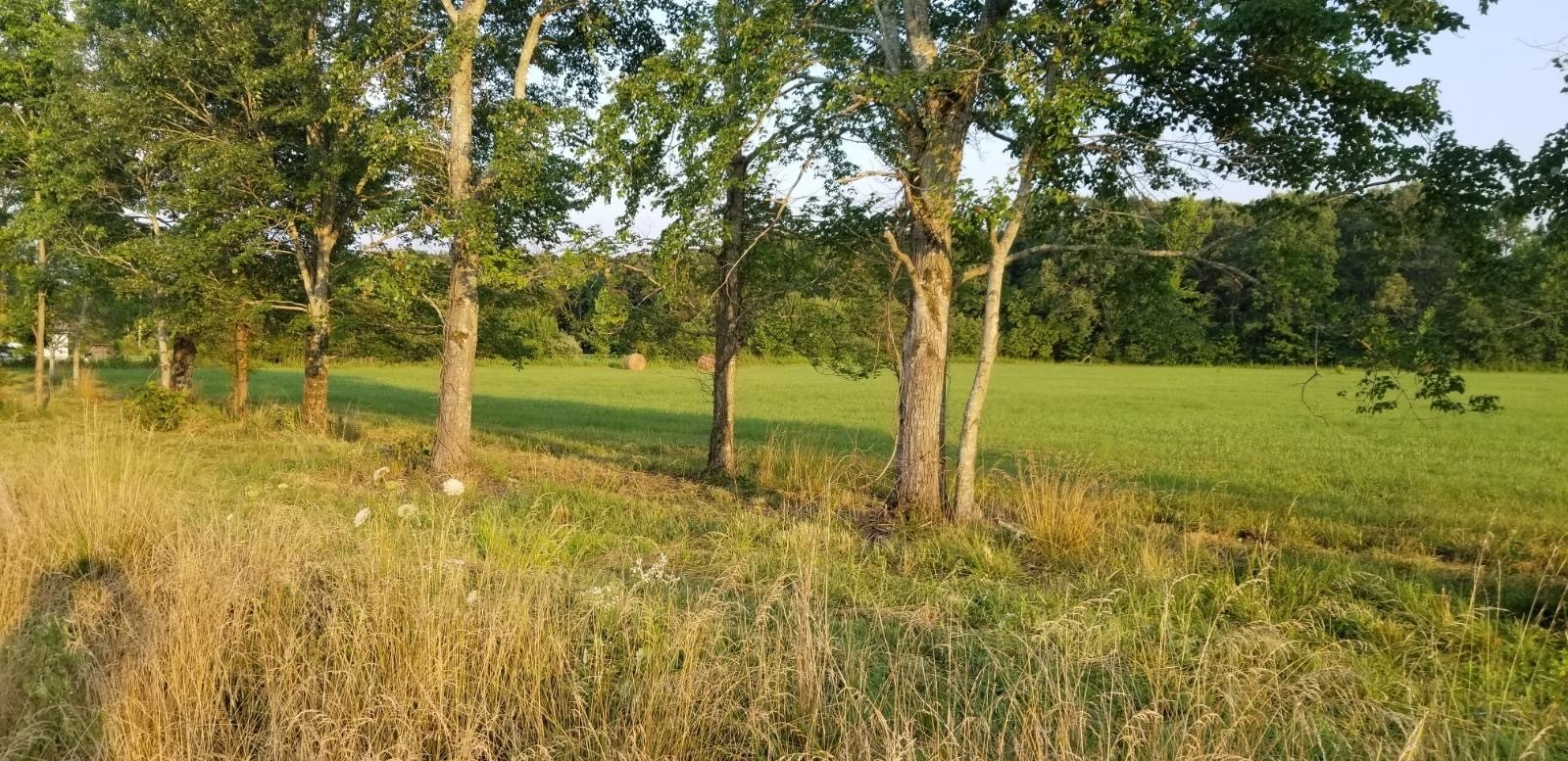 144 Deer Creek Lane Property Photo 43