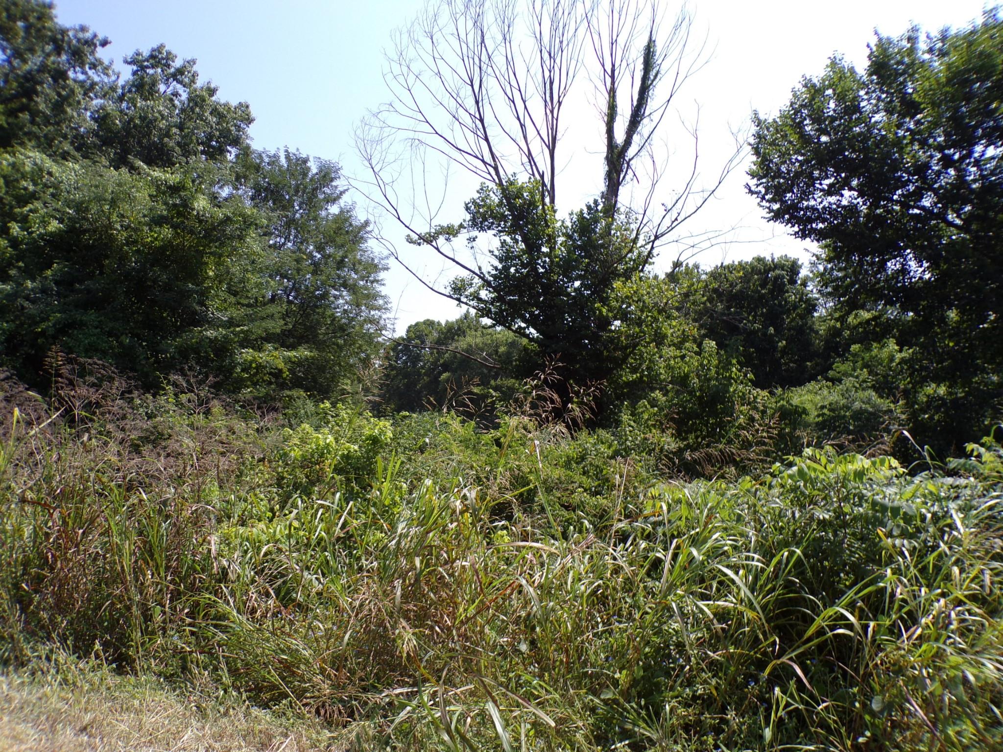 13n State Highway 13 N Property Photo