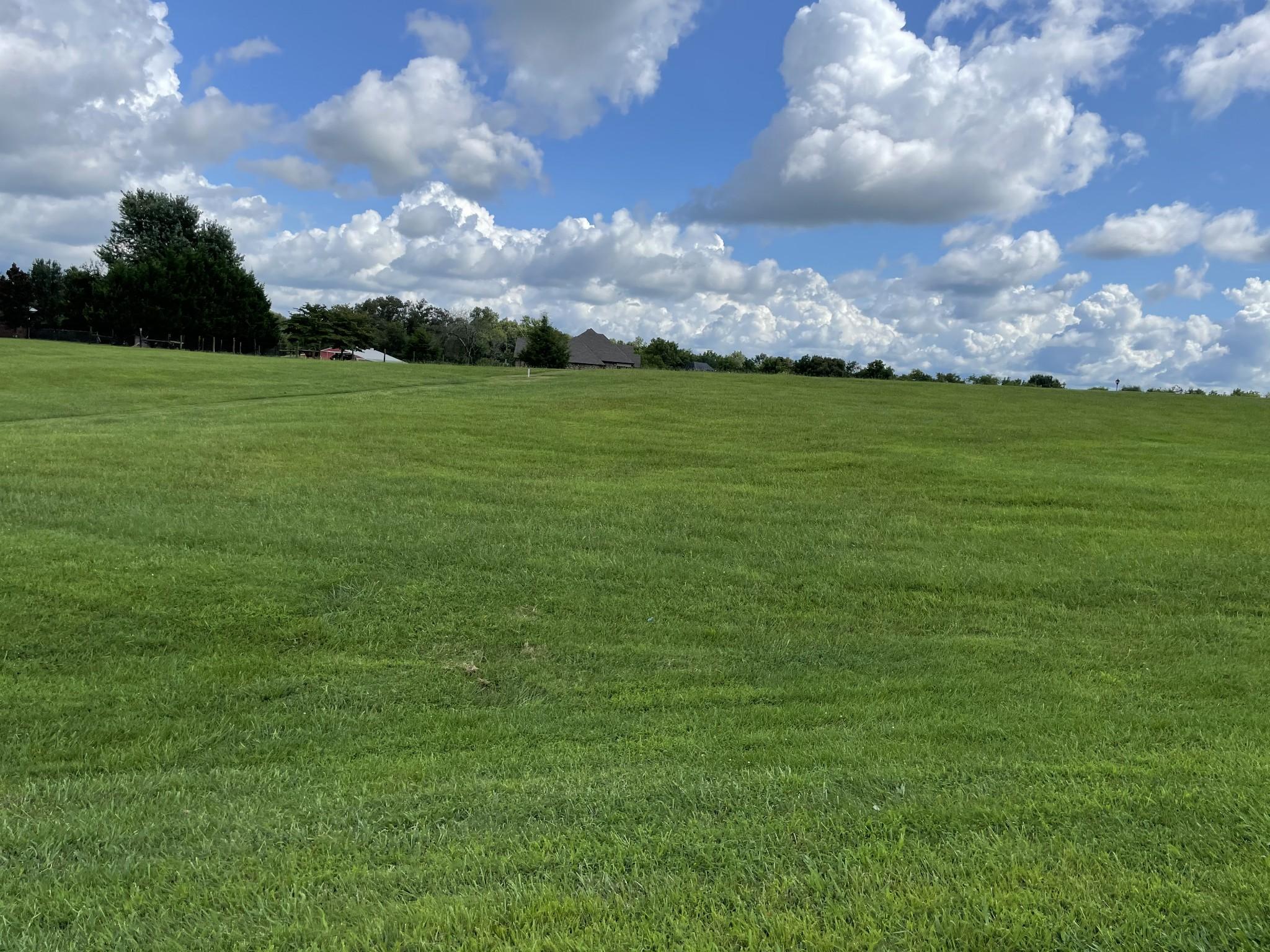 0 Hills Dr Property Photo
