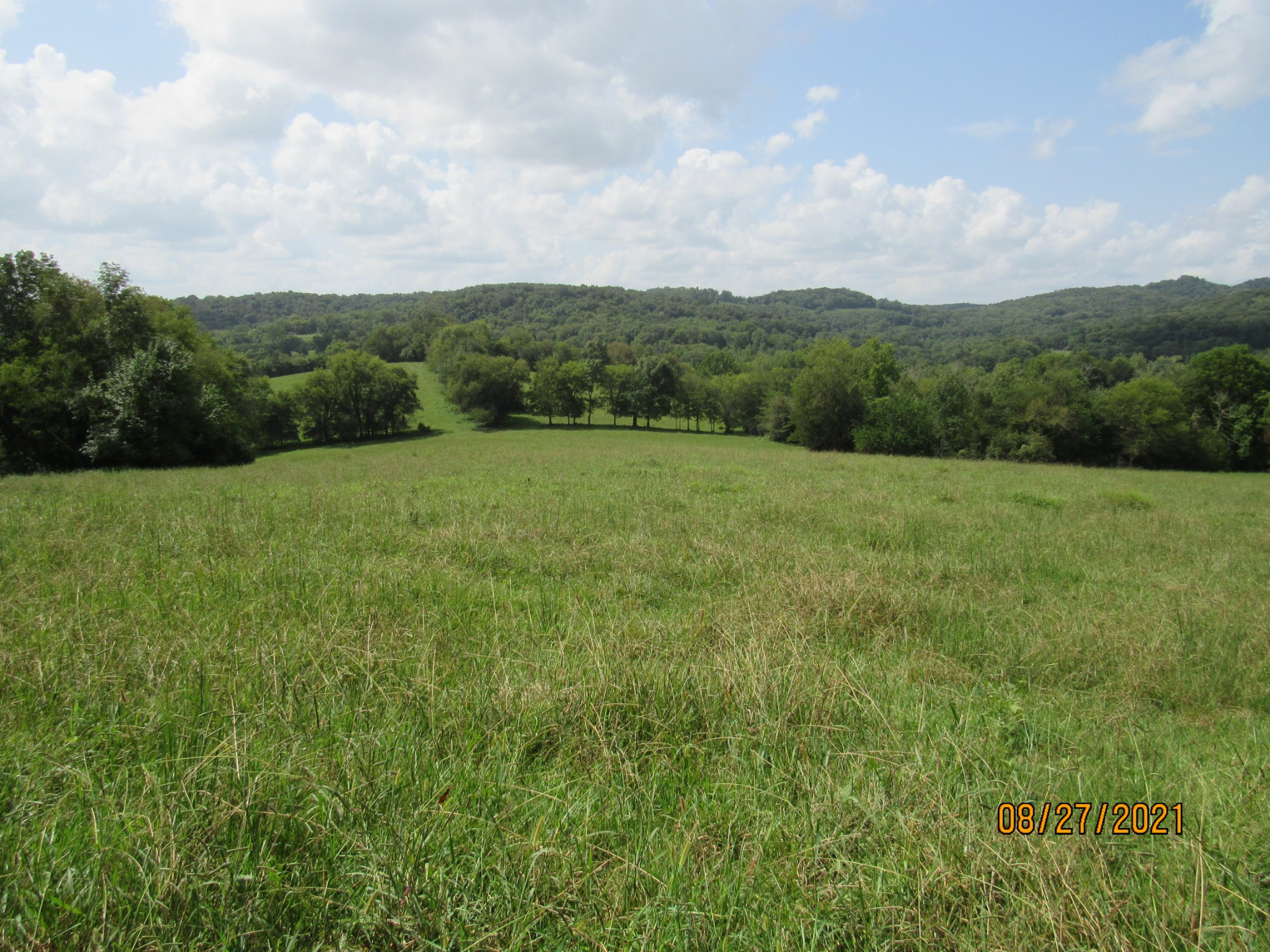 430 Williams Hollow Ln. Property Photo