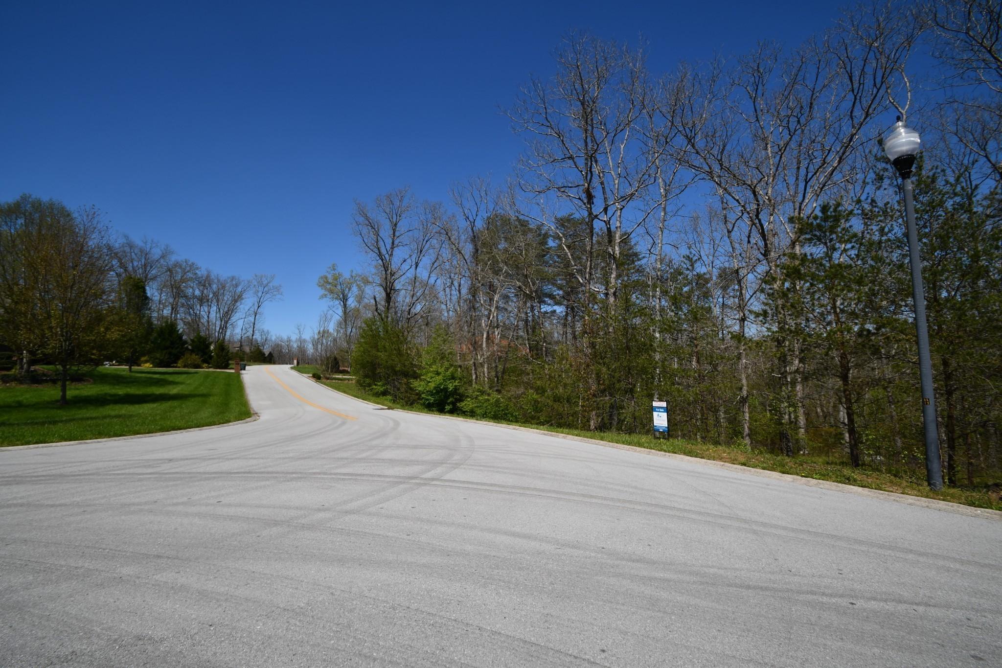 253 Riverchase Drive Property Photo