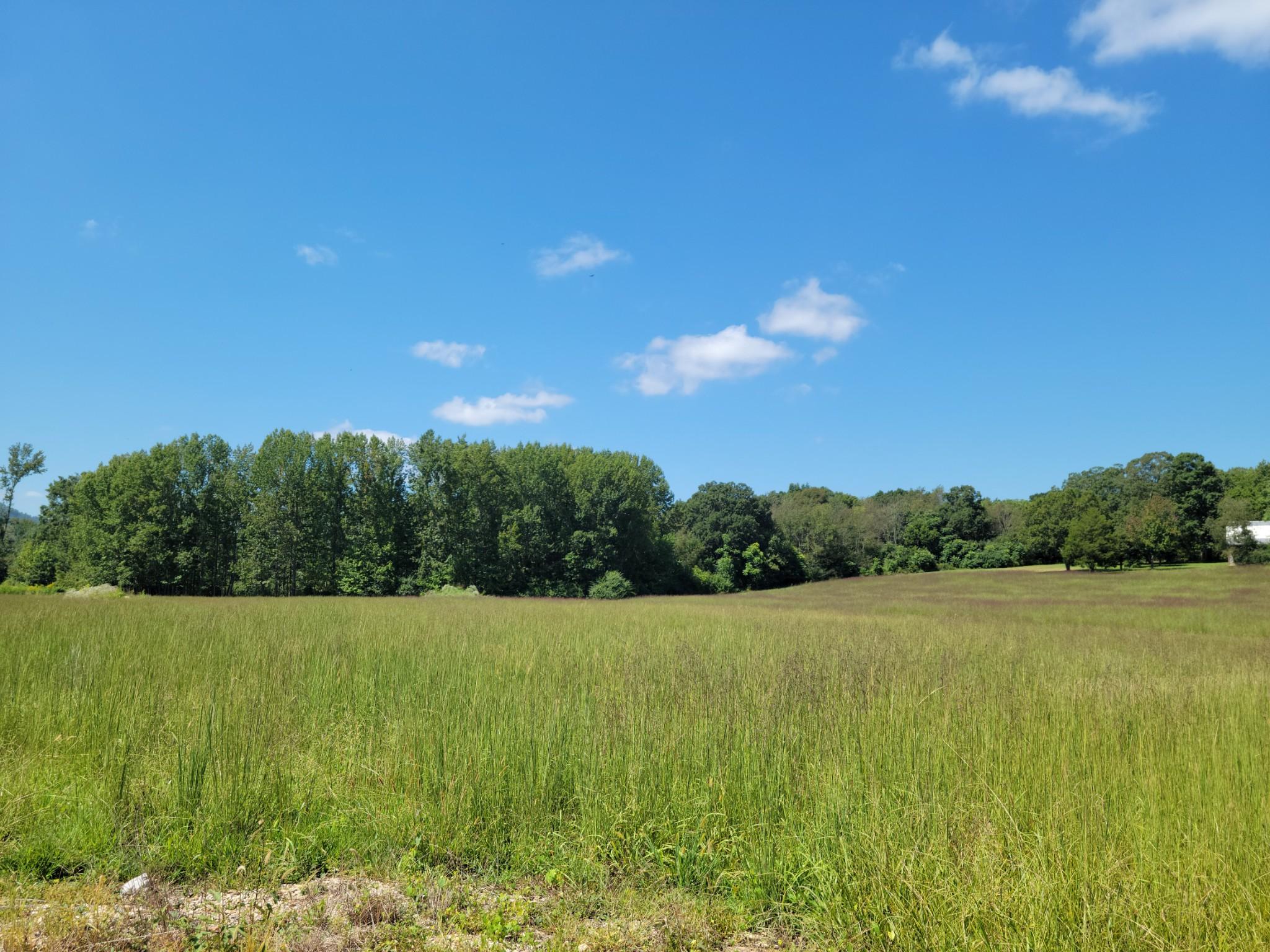 607 Pea Ridge Rd Property Photo