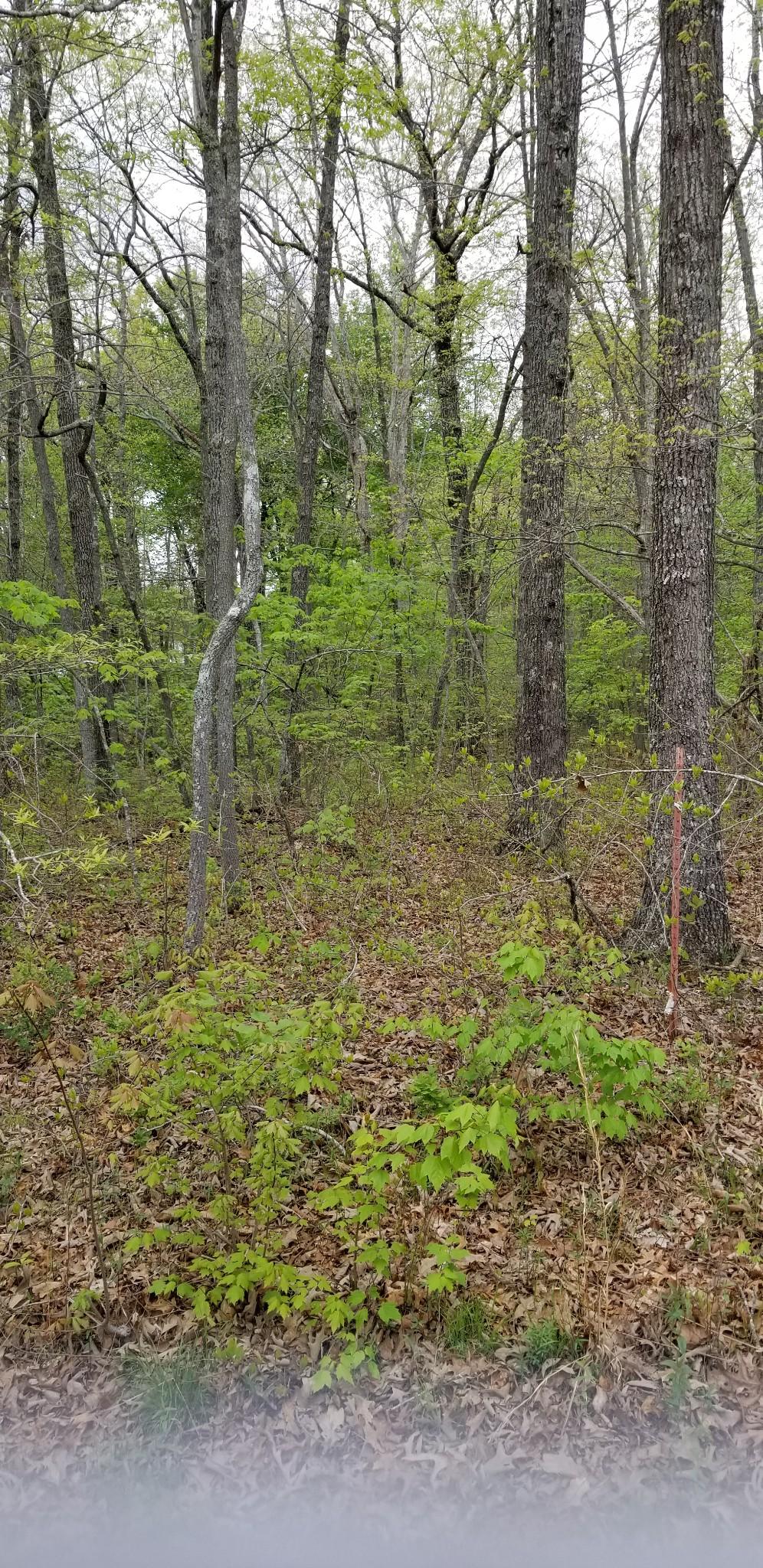 3026 Shawnee Rd Property Photo