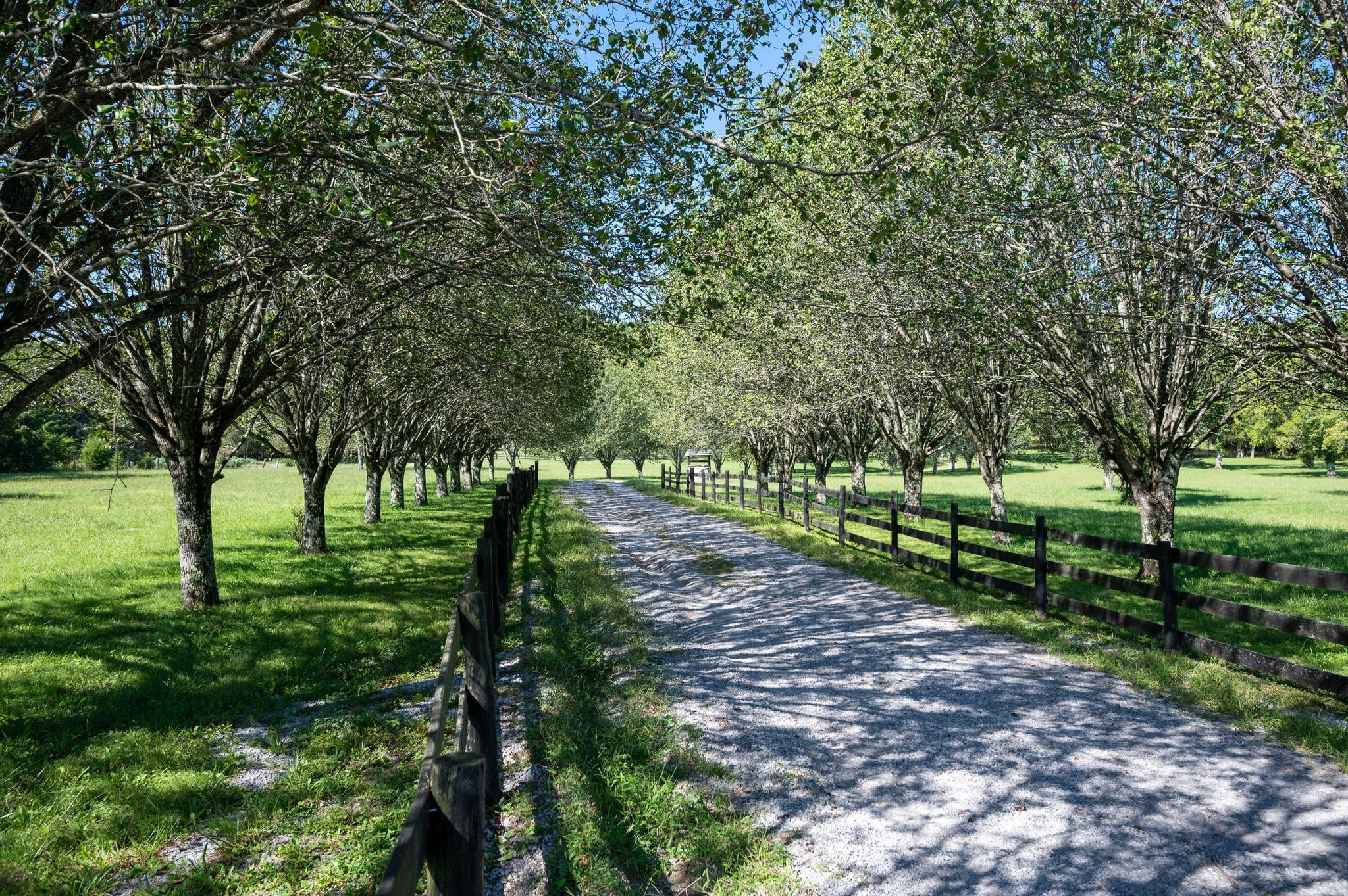 8675 Rocky Fork Almaville Rd Property Photo 1