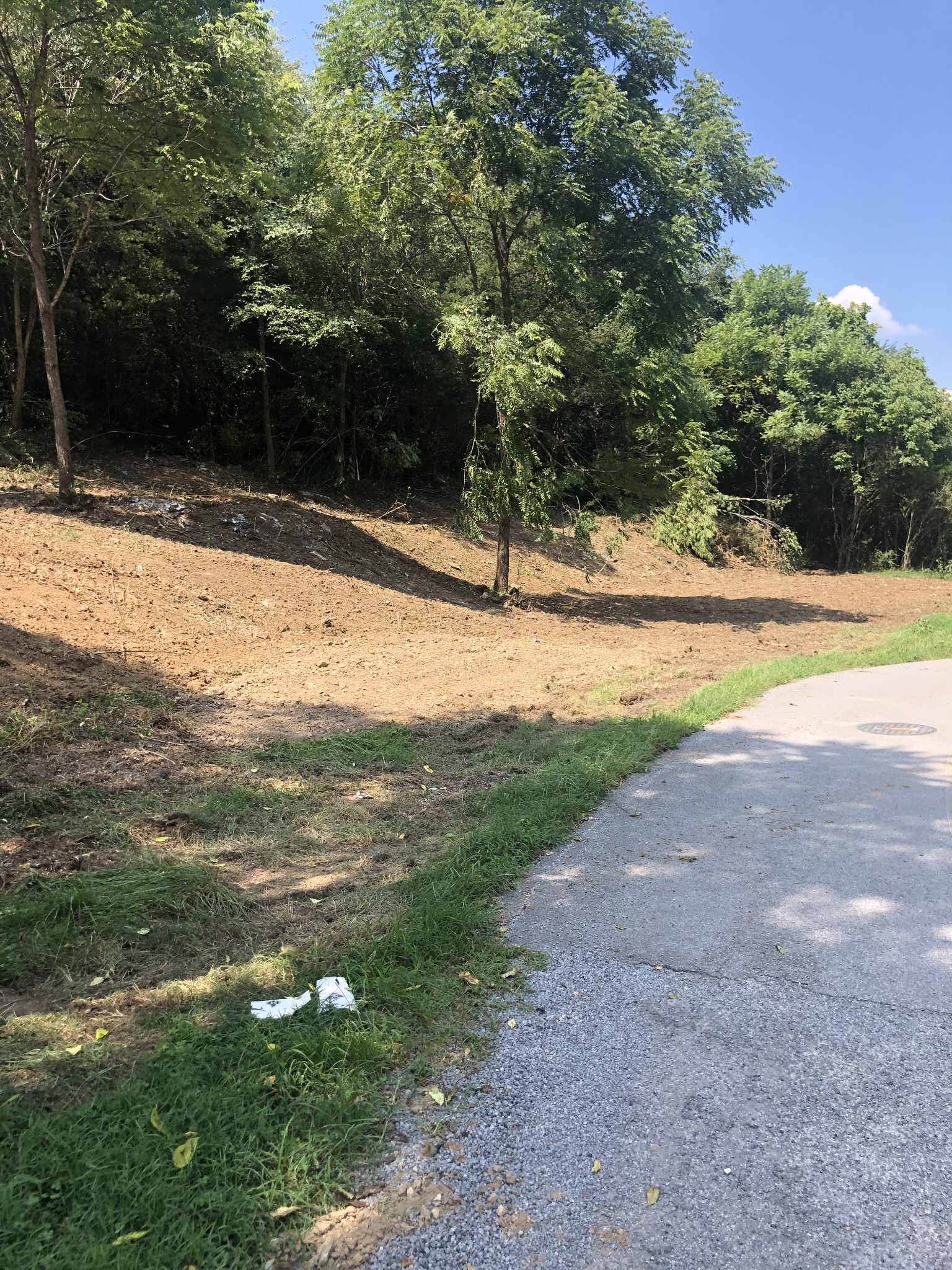 0 Gipson Hollow Rd Property Photo 1