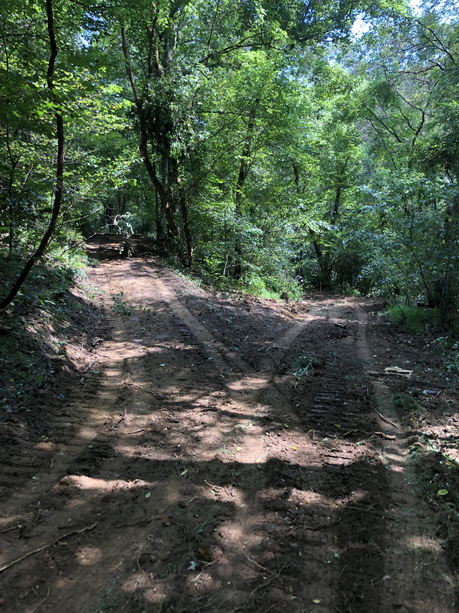 0 Gipson Hollow Rd Property Photo 14