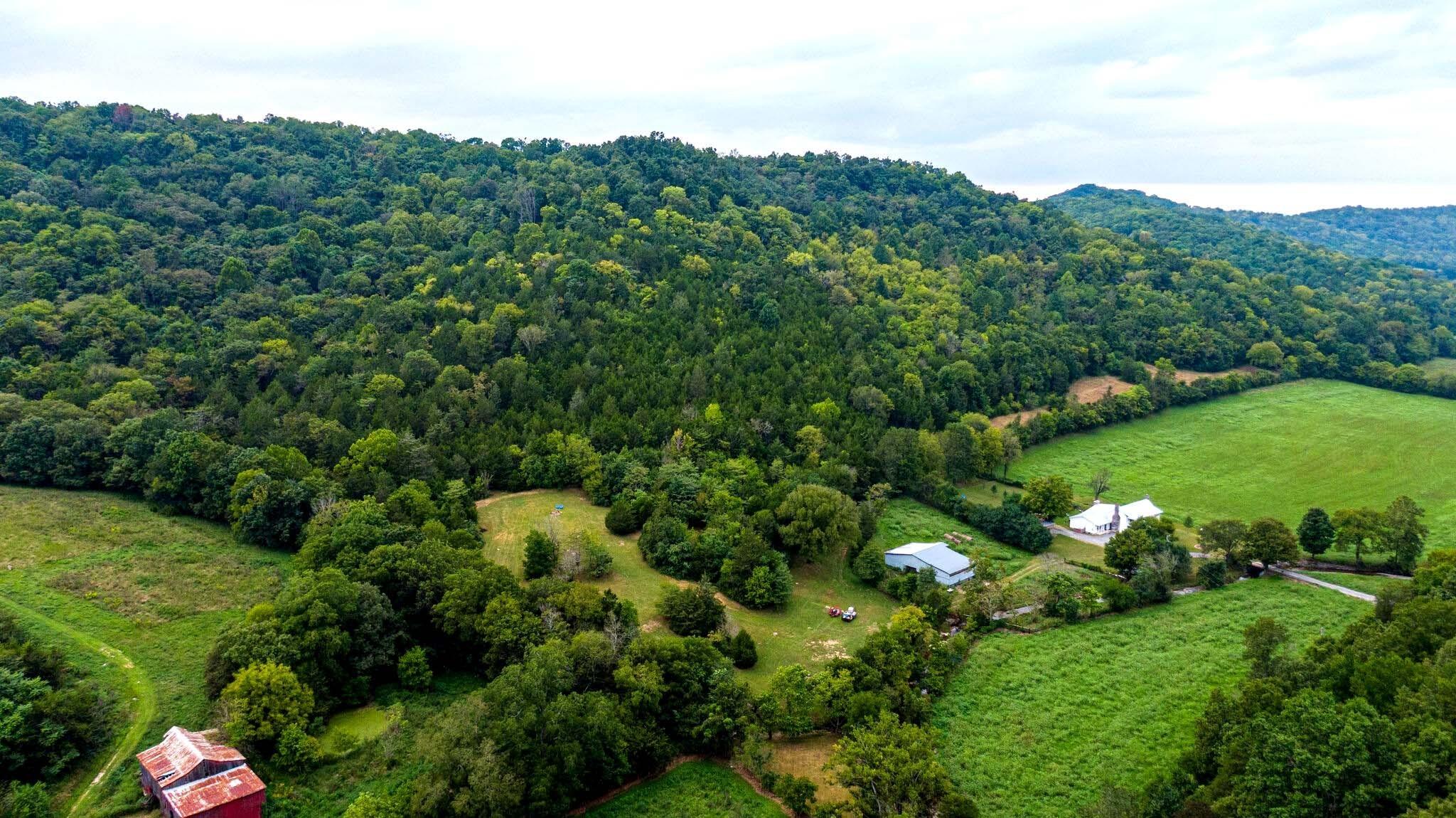 3425 Hurricane Creek Rd Property Photo 16