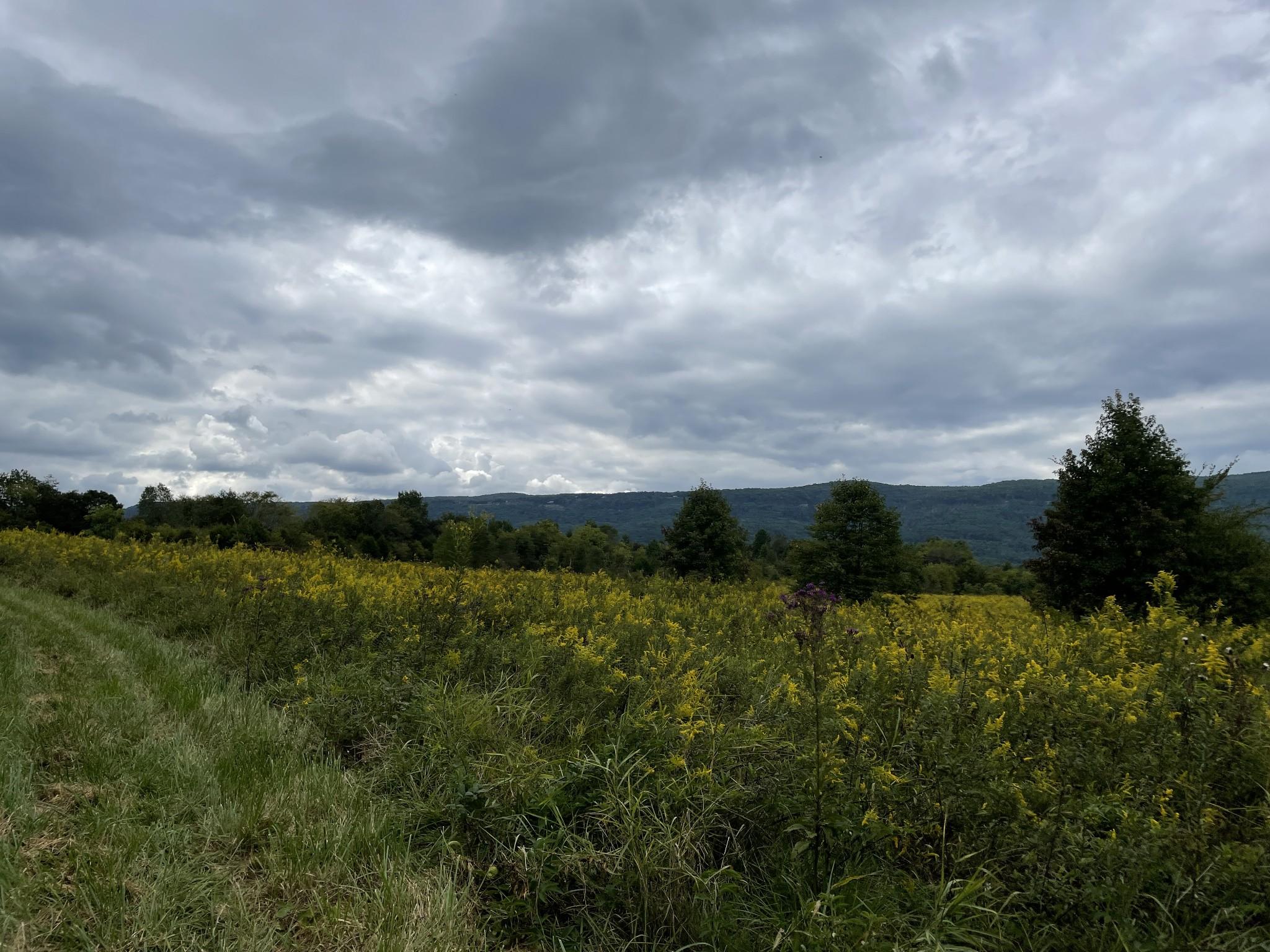 0 Sequatchie County Line Property Photo