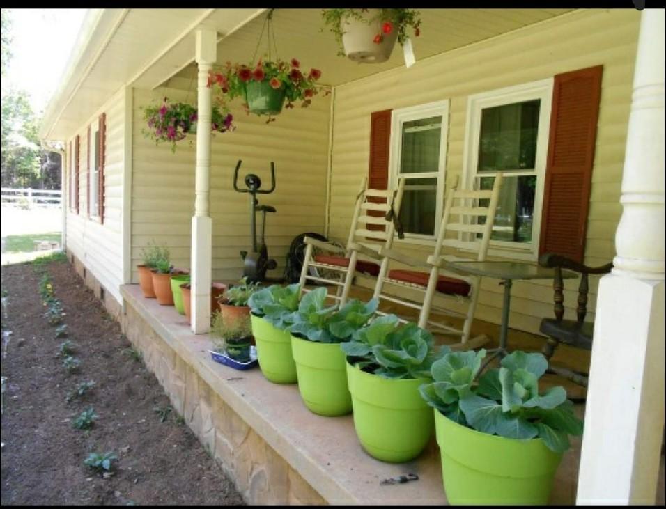 9985 Rocky Hill Rd Property Photo 2