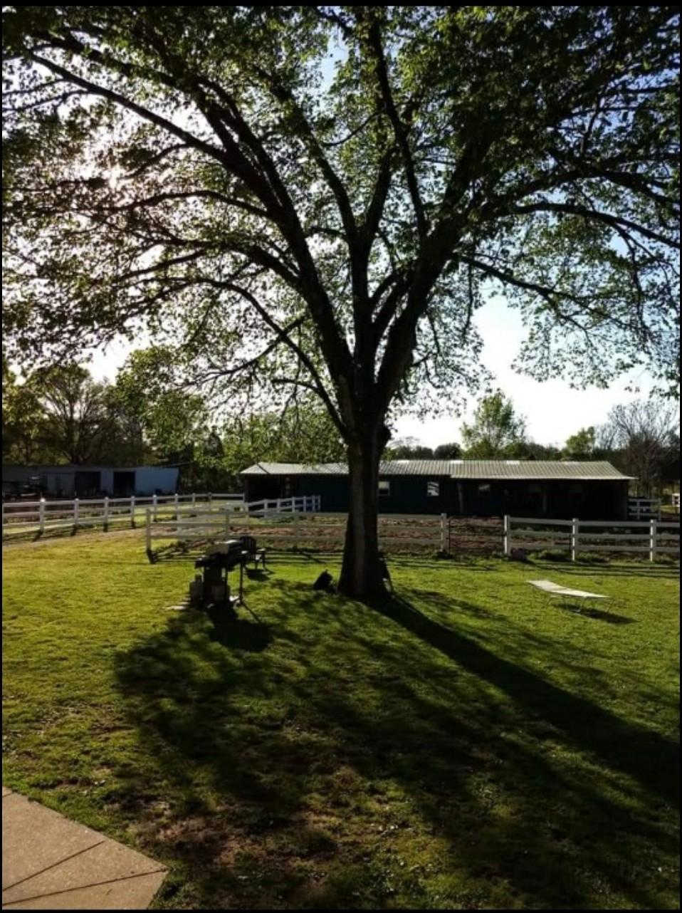 9985 Rocky Hill Rd Property Photo 5