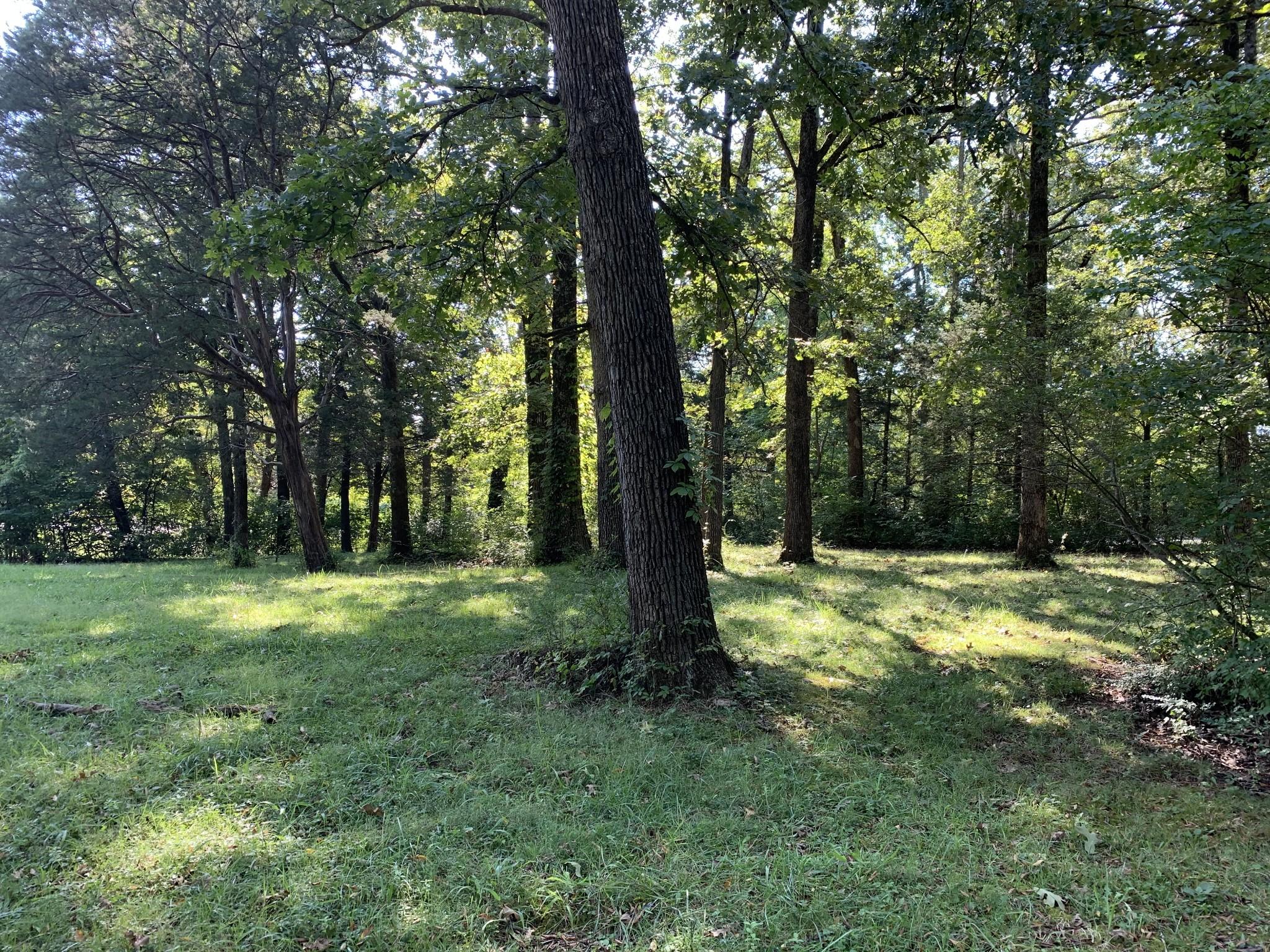 4060 Murfreesboro Pike Property Photo 1