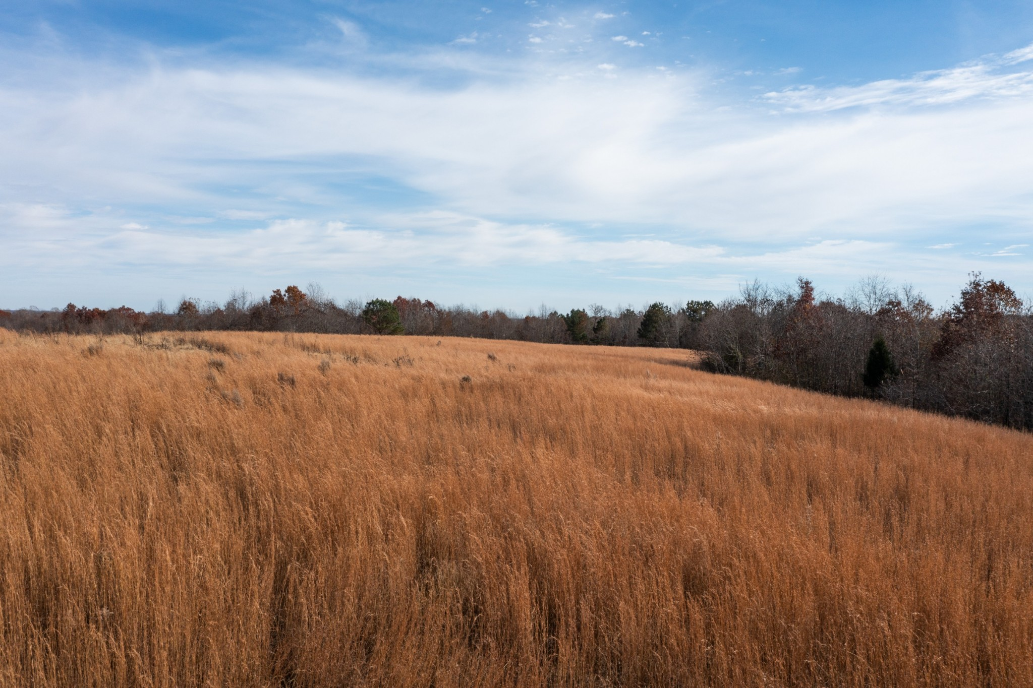 1600 Barren Hollow Rd Property Photo 1
