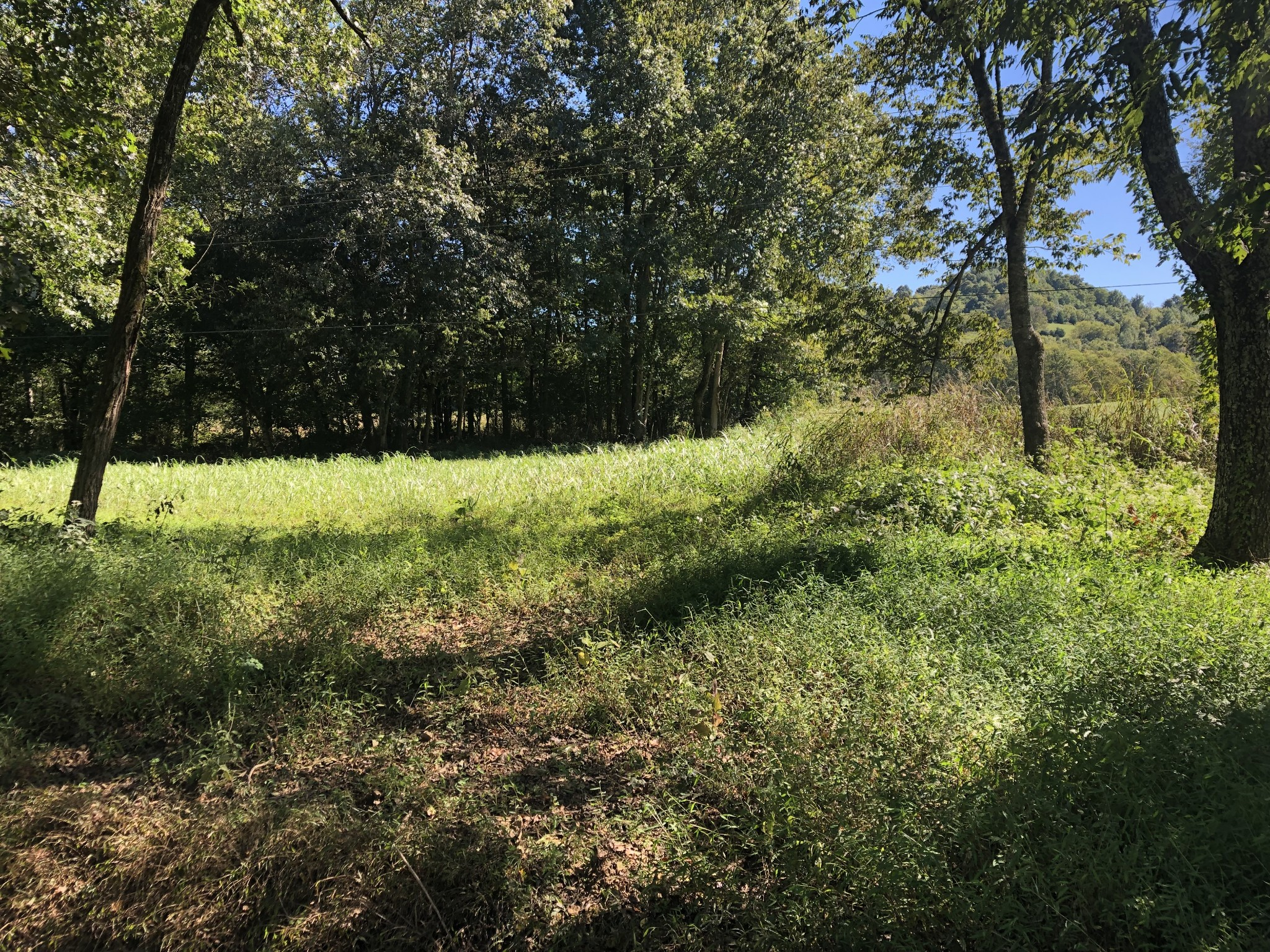 4 Kempville Hwy Property Photo 3