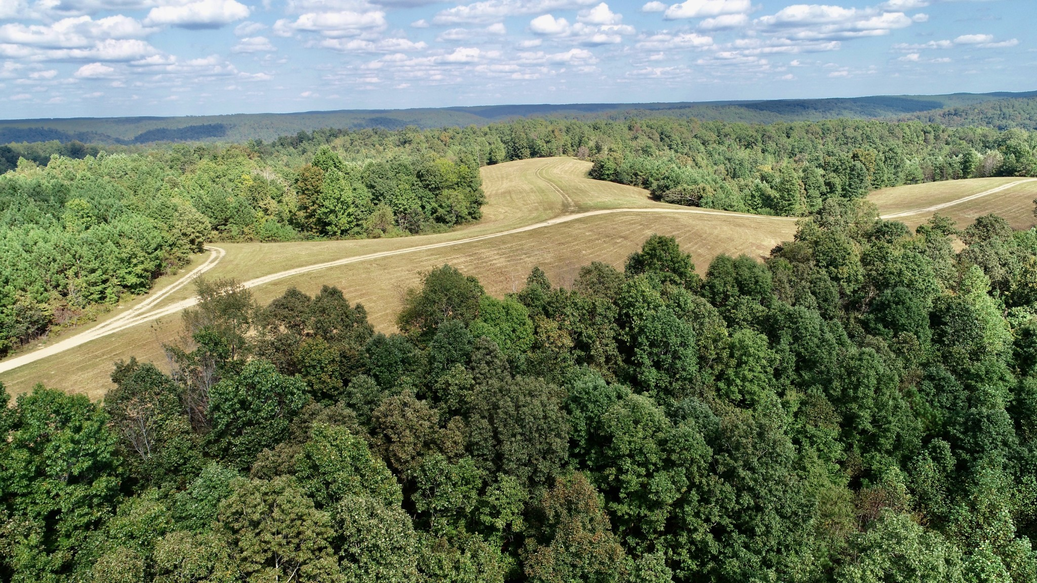 169 Forest Ridge Road Property Photo