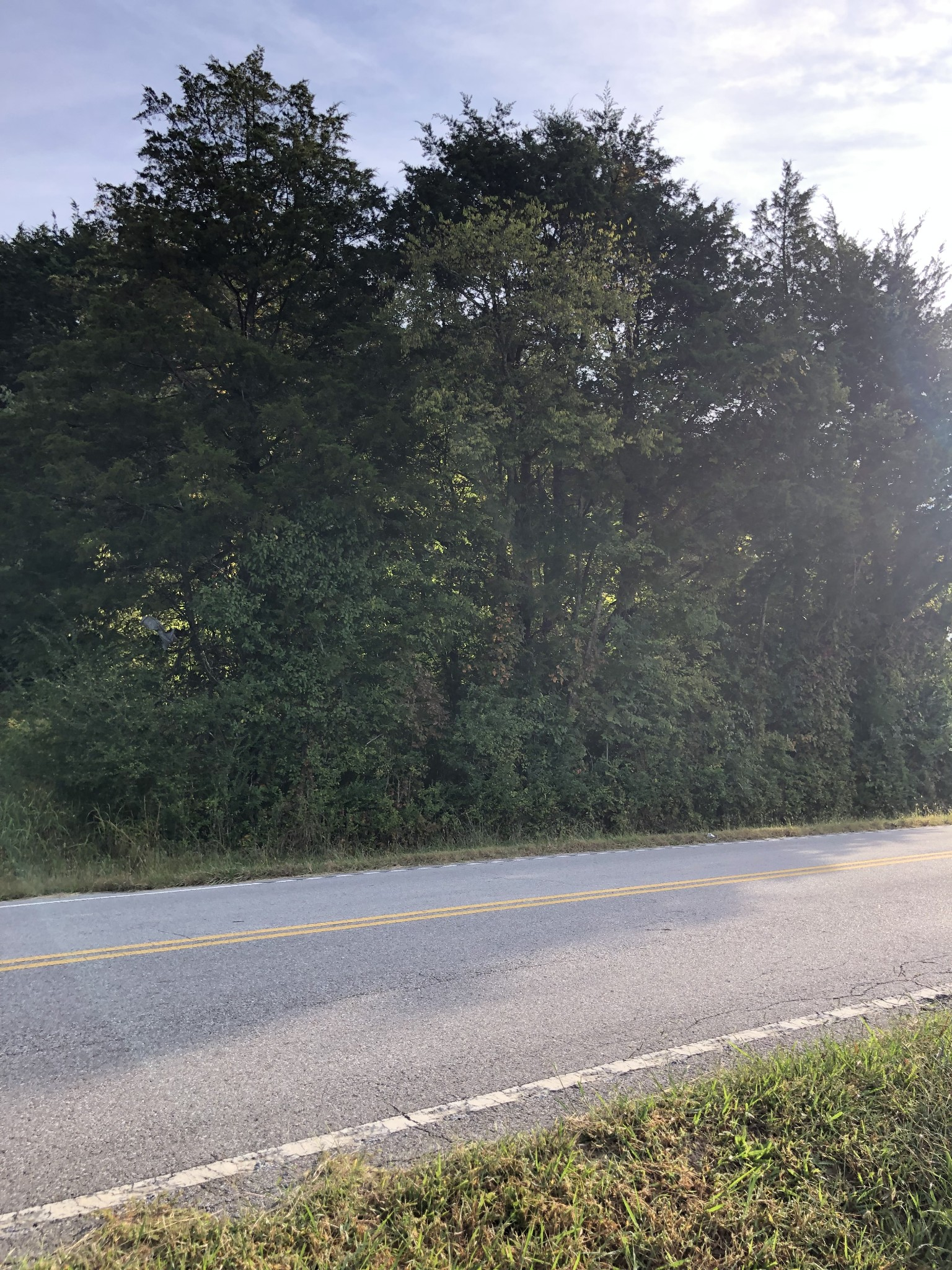 0 Auburntown Rd. Property Photo 3