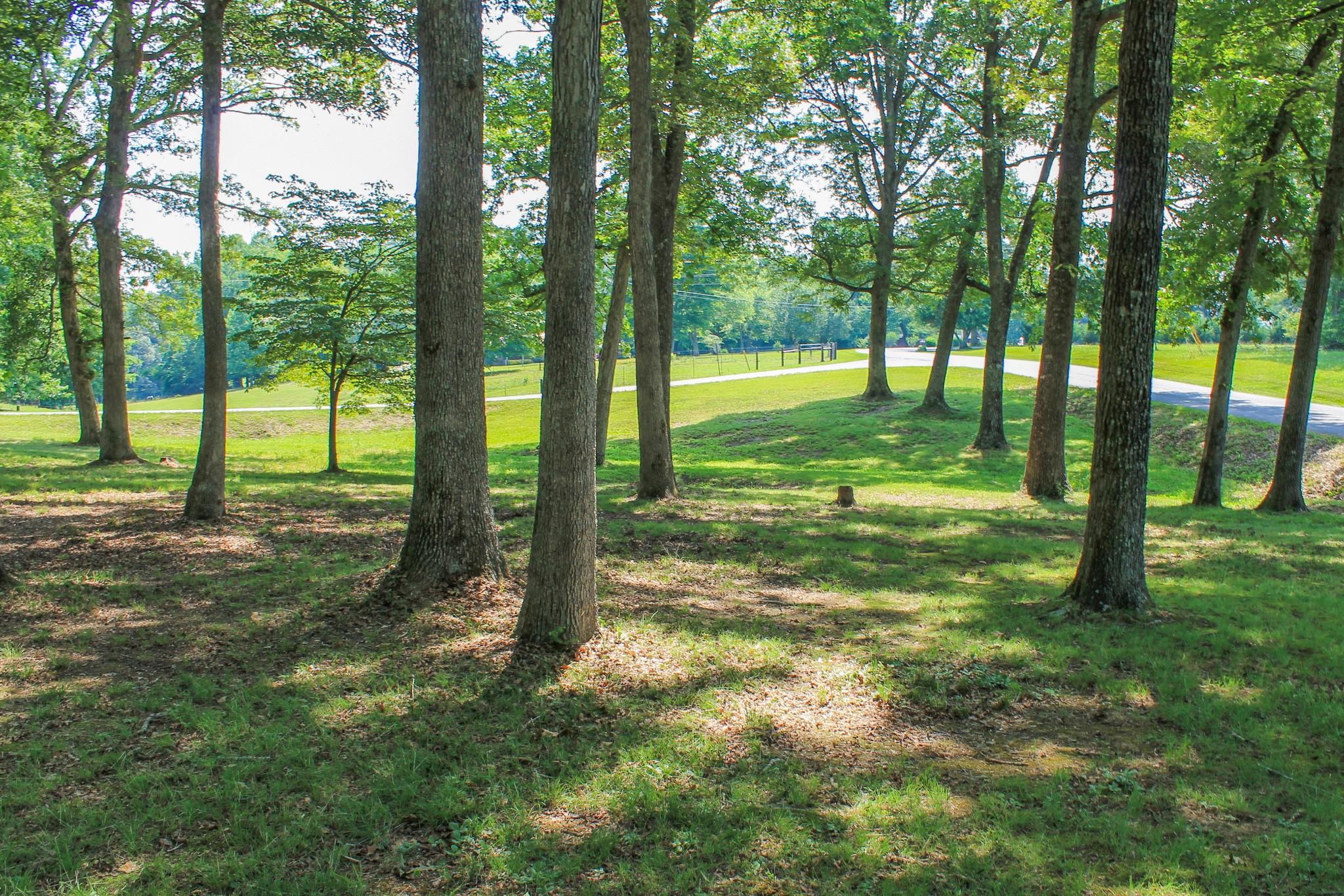 55 Pinewood Ln Property Photo 2