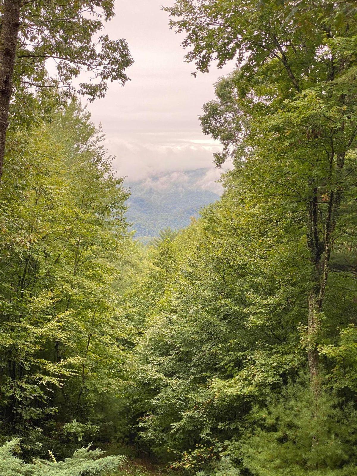 0 Bear Ridge Dr Property Photo