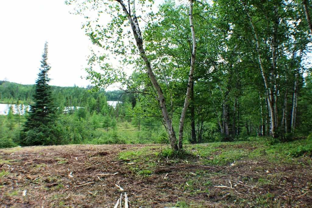 Tract A & B County Rd 52 Property Photo