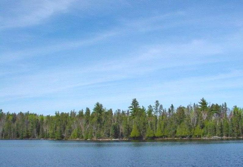 Tbd Little Elbow Lake Property Photo