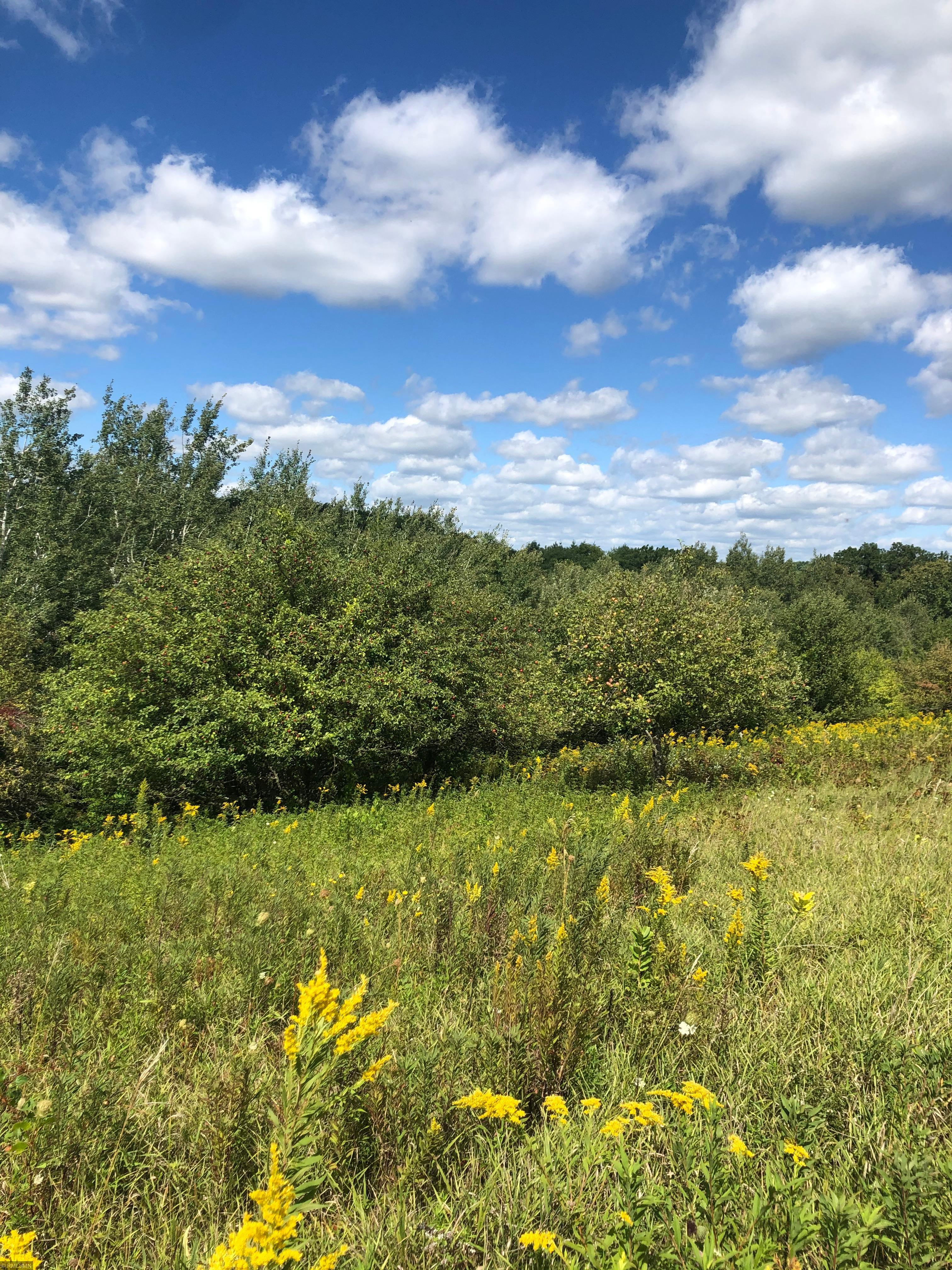 Tbd County Road 15 Property Photo 1