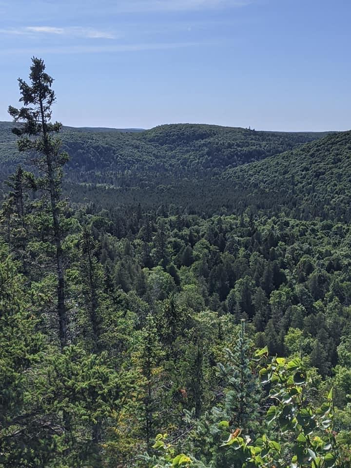 Xx Pine Peak Road Property Photo