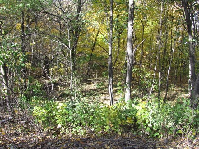 Xxx Crooked Lake Property Photo