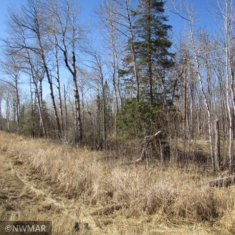Tbd State Highway 11 Property Photo