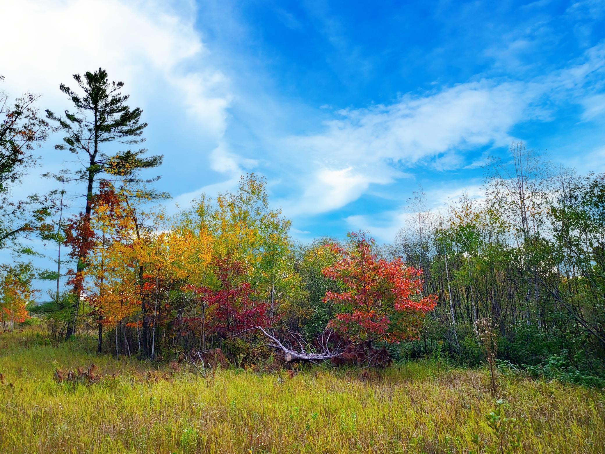 Xxx Miller Lake Road Property Photo