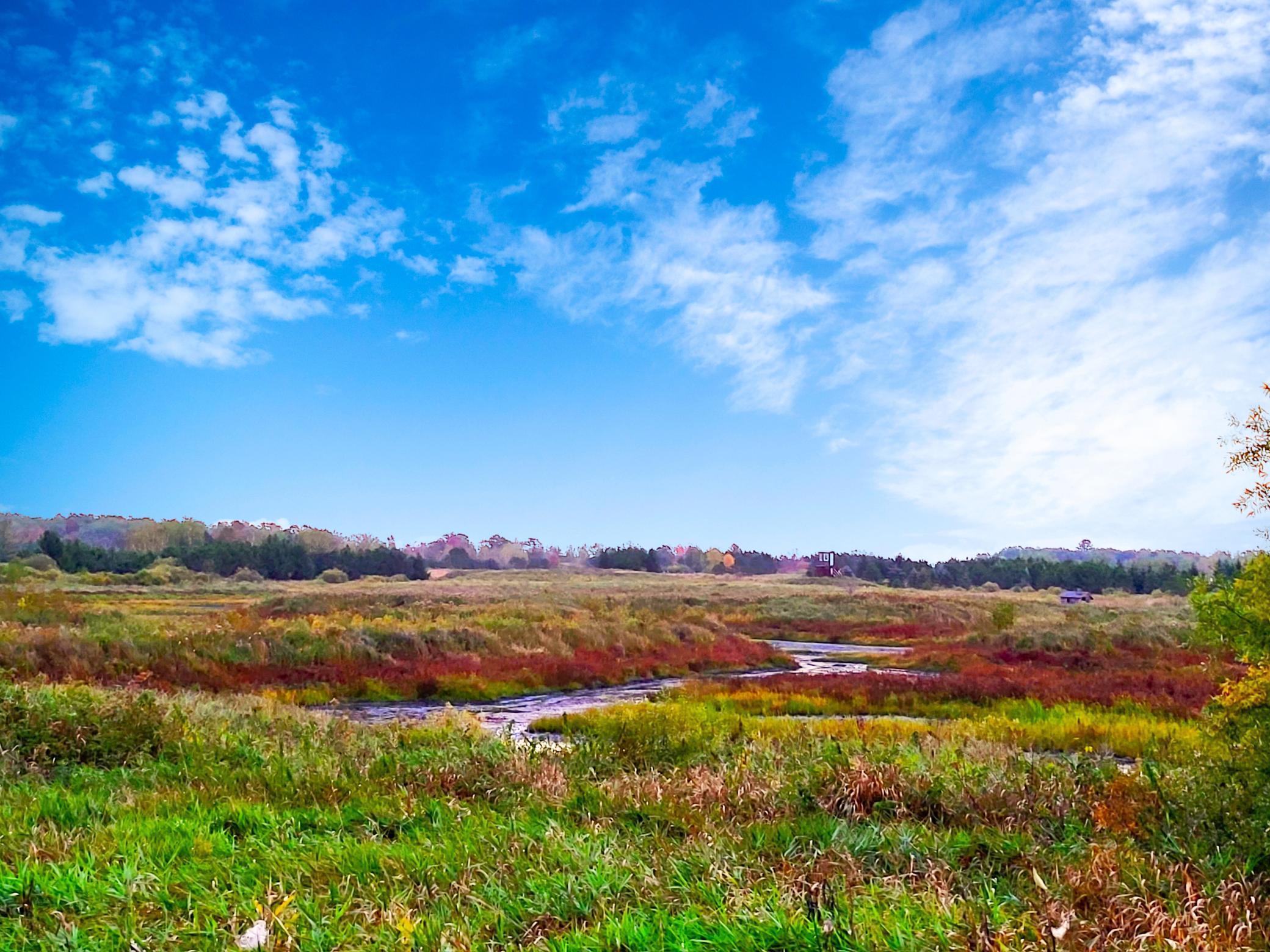 Zz Miller Lake Road Property Photo