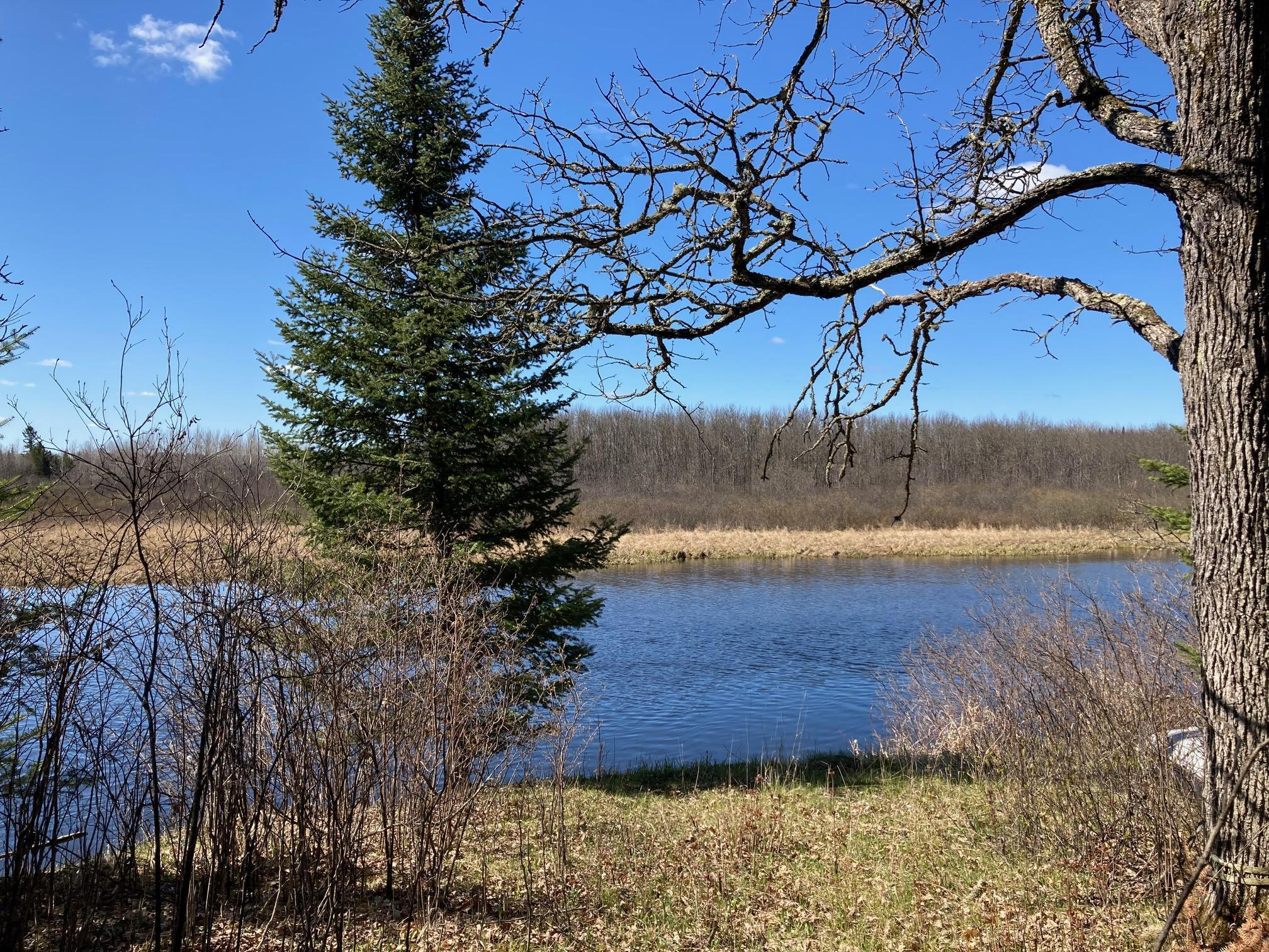 Tbd Riise Road Property Photo