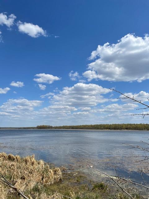 Boy River Real Estate Listings Main Image