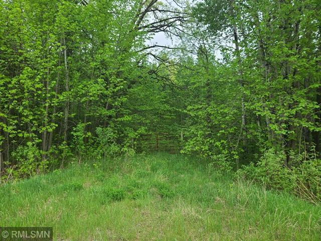 12479 Battle Road Property Photo