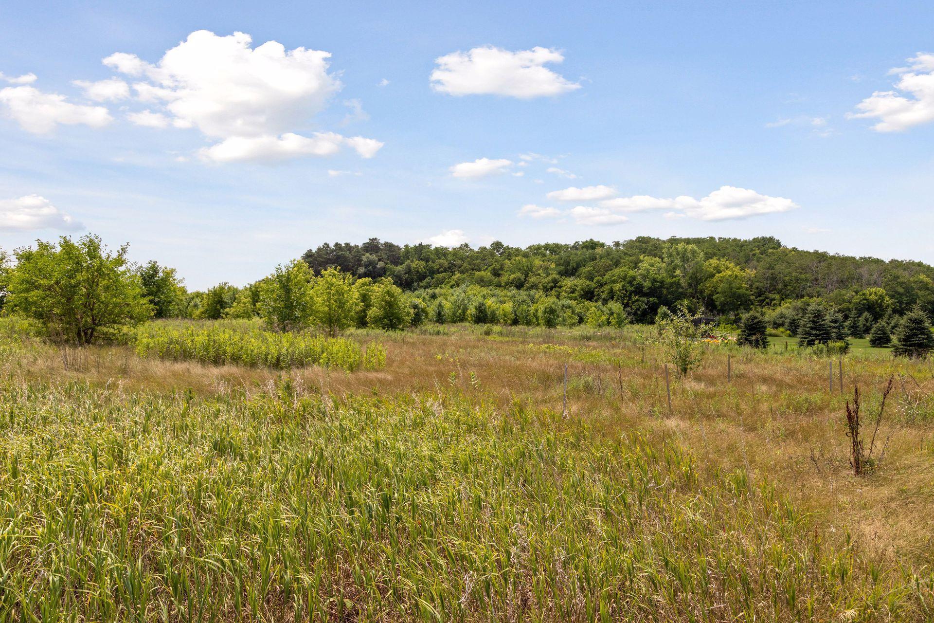 12455 Meadow Bluff Trail Property Photo