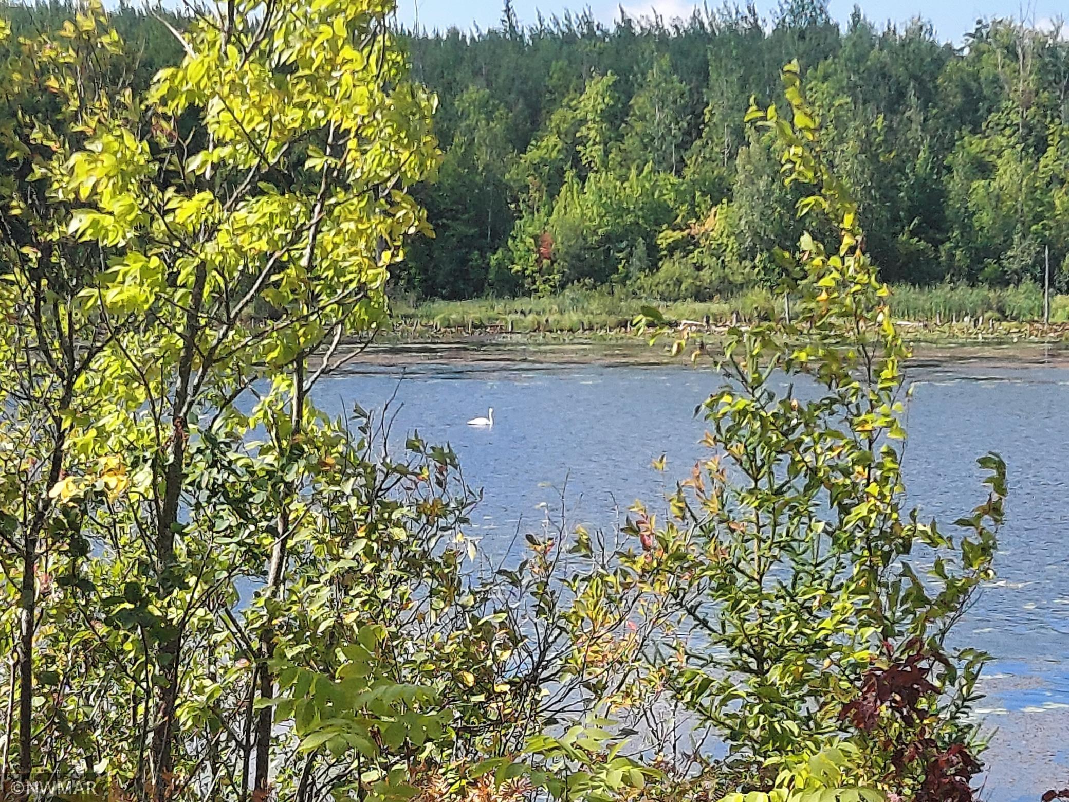 12313 Highway 46 Property Photo
