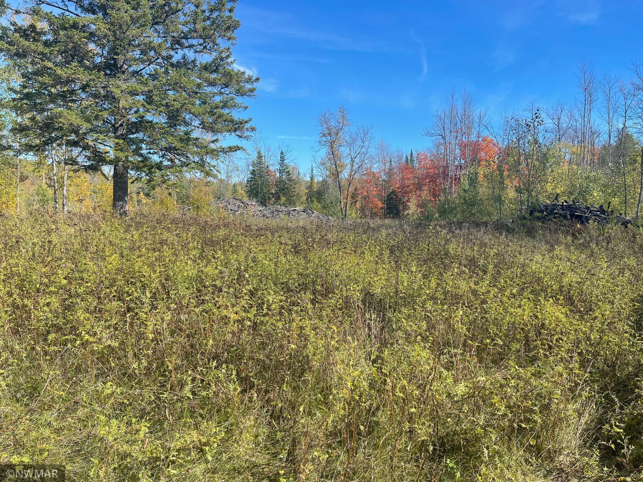 22380 New Maple Ridge Property Photo